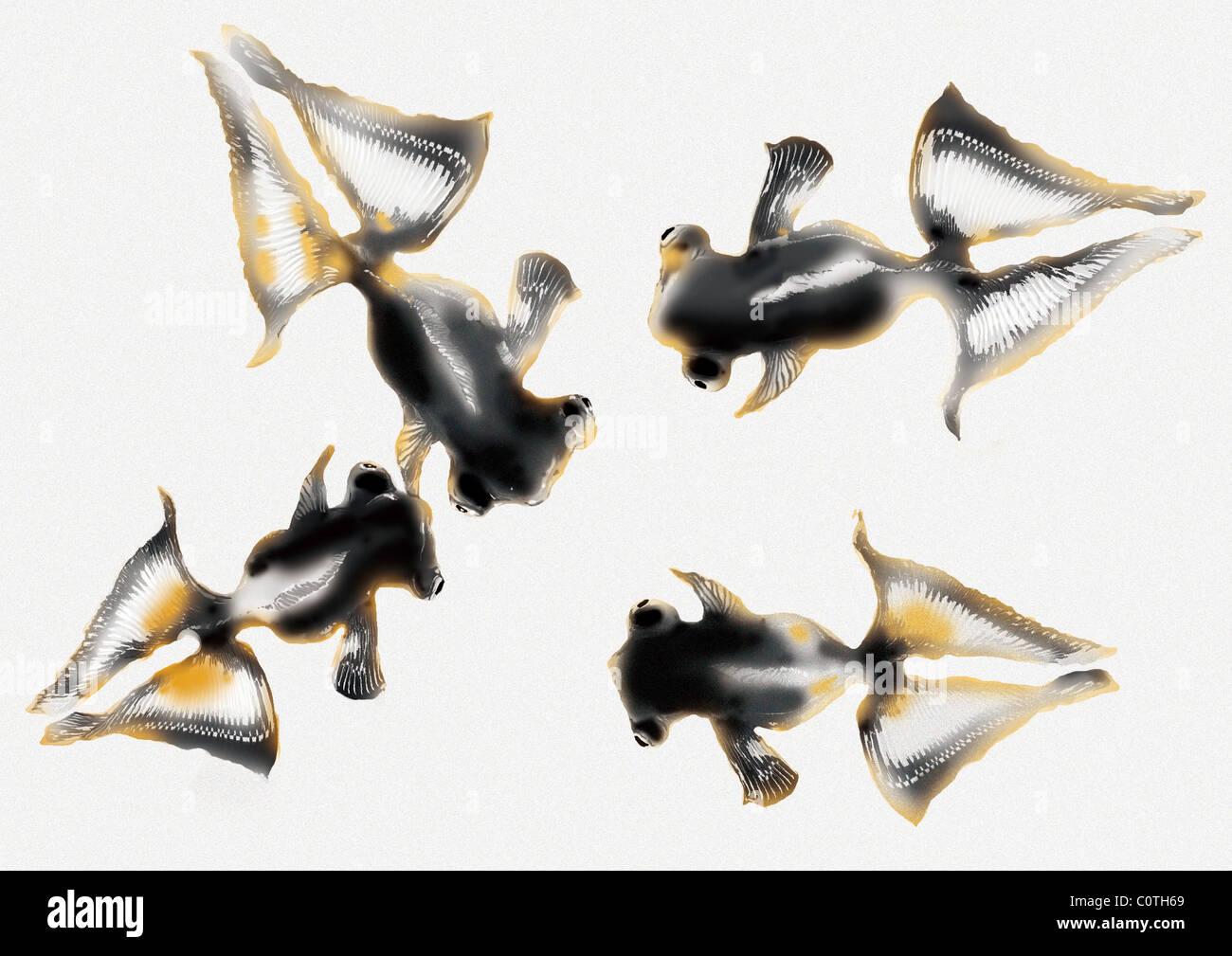 Muster der japanischen Malerei, Goldfisch Stockbild