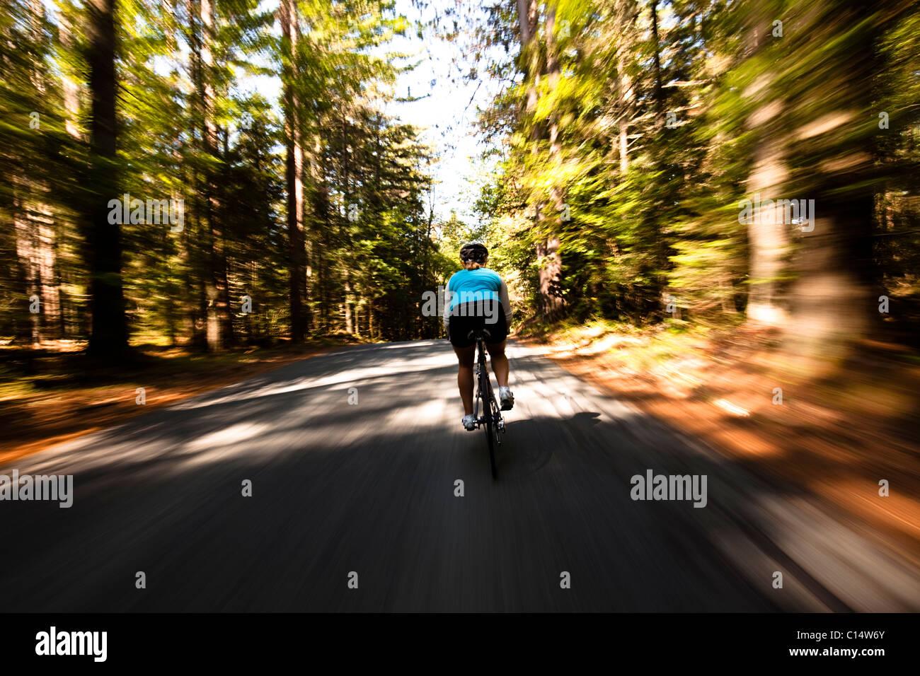 Ein weibliche Radfahrer fährt schnell auf eine kleine schmale Straße in der Nähe von Franconia, New Stockbild
