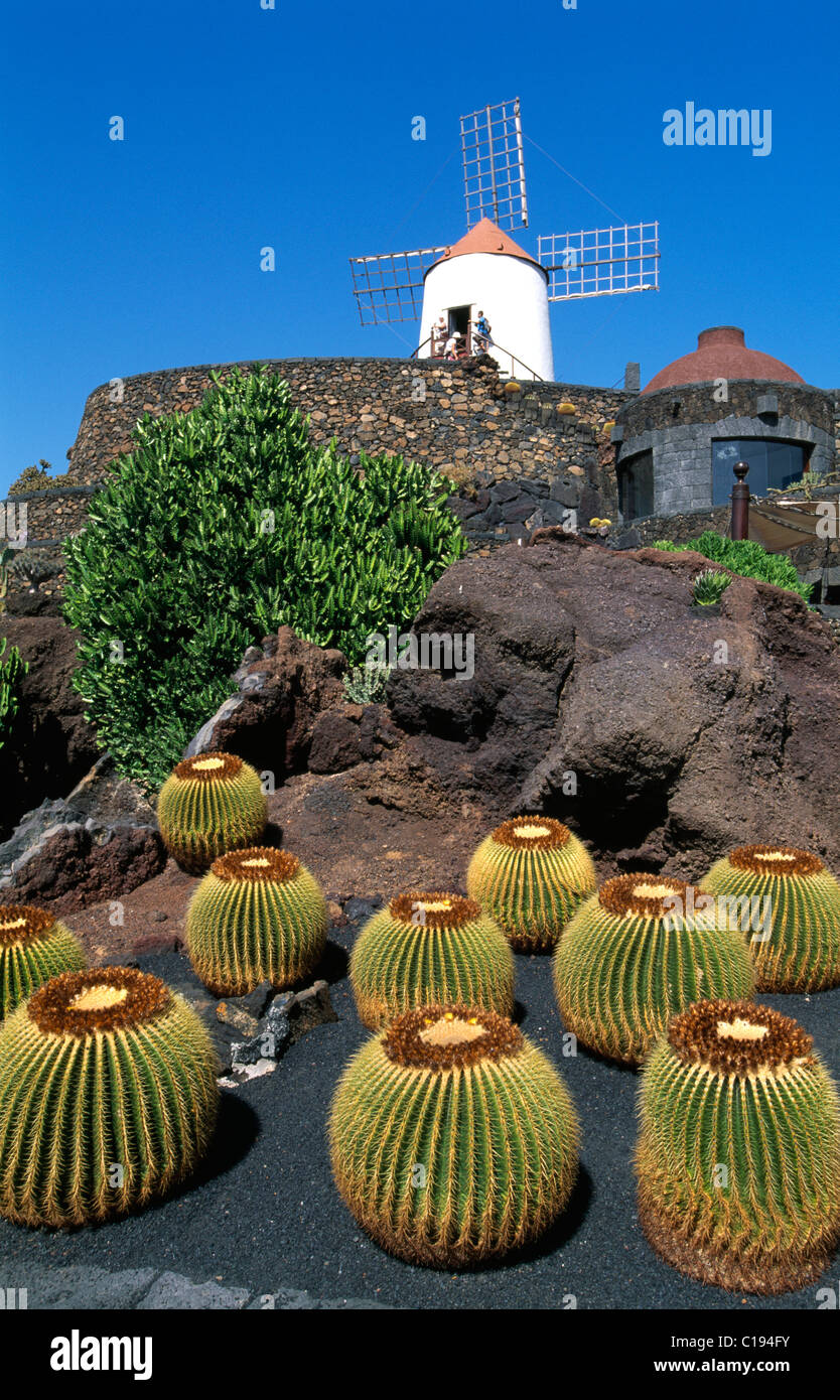 Jardin de Cactus in Guatiza, Lanzarote, Kanarische Inseln, Spanien, Europa Stockbild