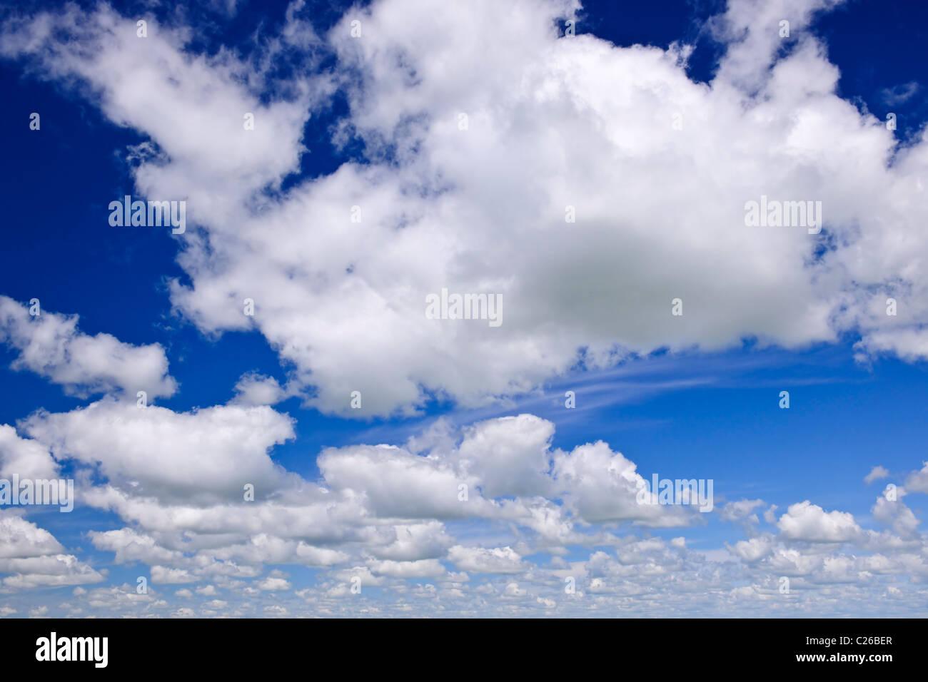 Hintergrund des blauen Himmels mit weißen Cumulus-Wolken Stockbild