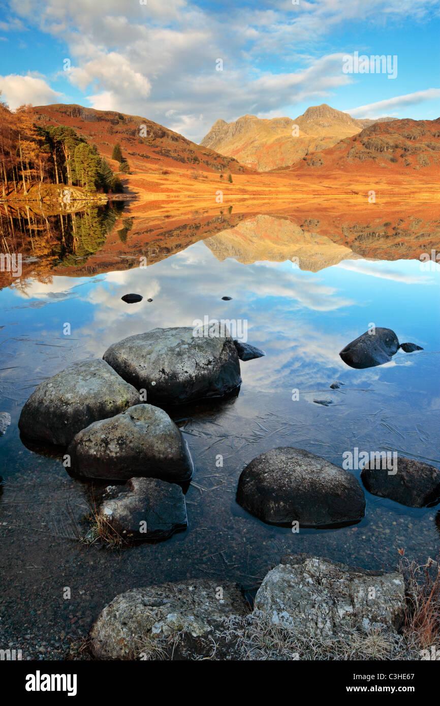 Späten Herbst Ice Linien die felsigen Ufern des Blea Tarn vor ein perfektes Spiegelbild Seite Hecht und die Stockbild
