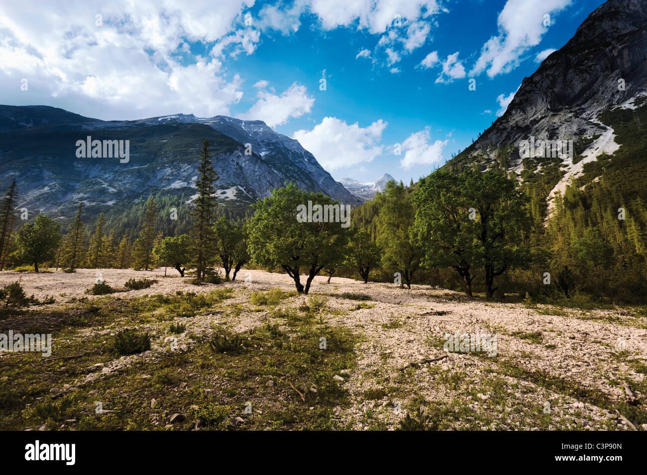 Österreich, Tirol, Blick auf Landschaft mit Bergen im Hintergrund Stockbild