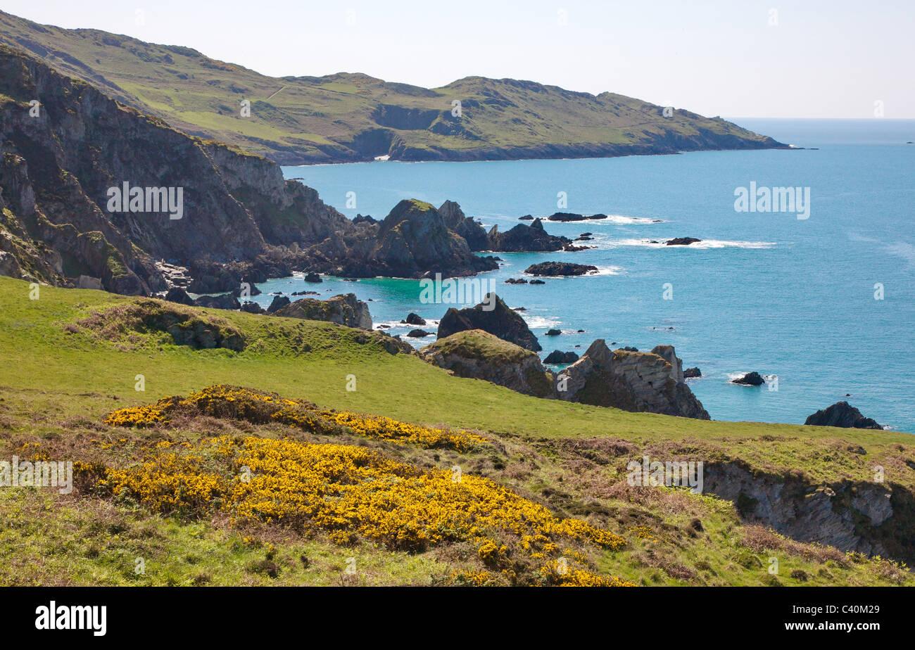 Blick vom Bull Punkt zum Morte Punkt auf dem South West Coast Path in Nord-Devon in der Nähe von Woolacombe Stockbild
