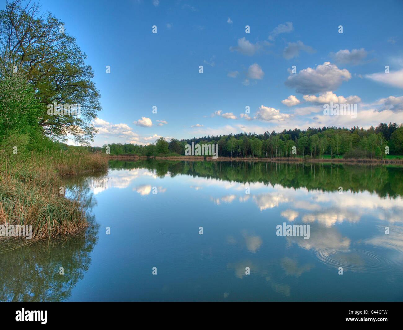 Blau, Feder, Himmel, Idylle, See, Holz, Wald, Wasser, Wolken, Kanton Zürich, Schweiz, Husemersee, See, Ossingen, Stockbild