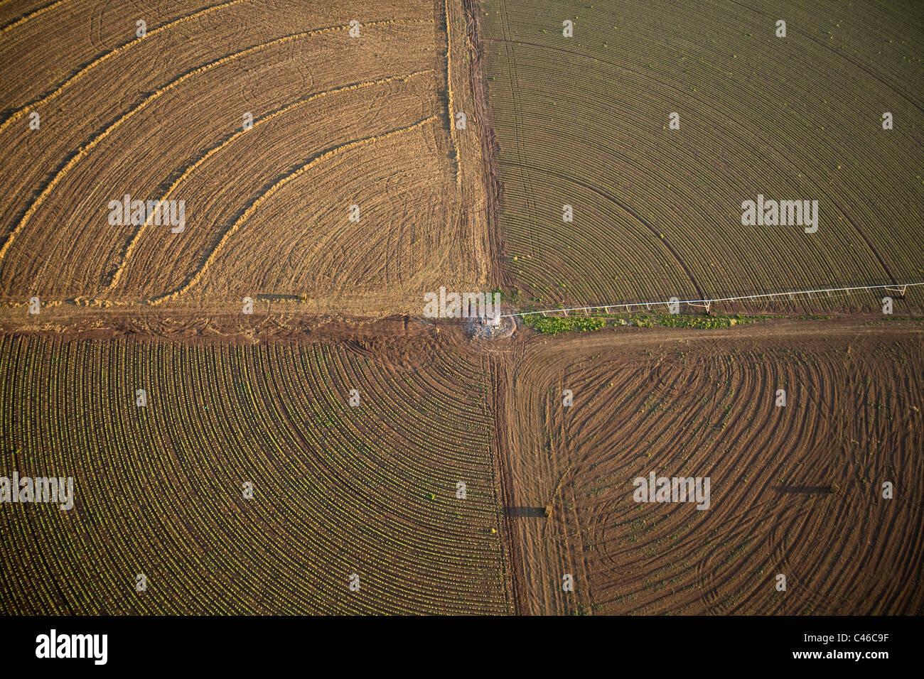 Luftaufnahme der Landwirtschaft Felder des Kibbutz Beit Alfa in die Jezreel Senke Stockbild