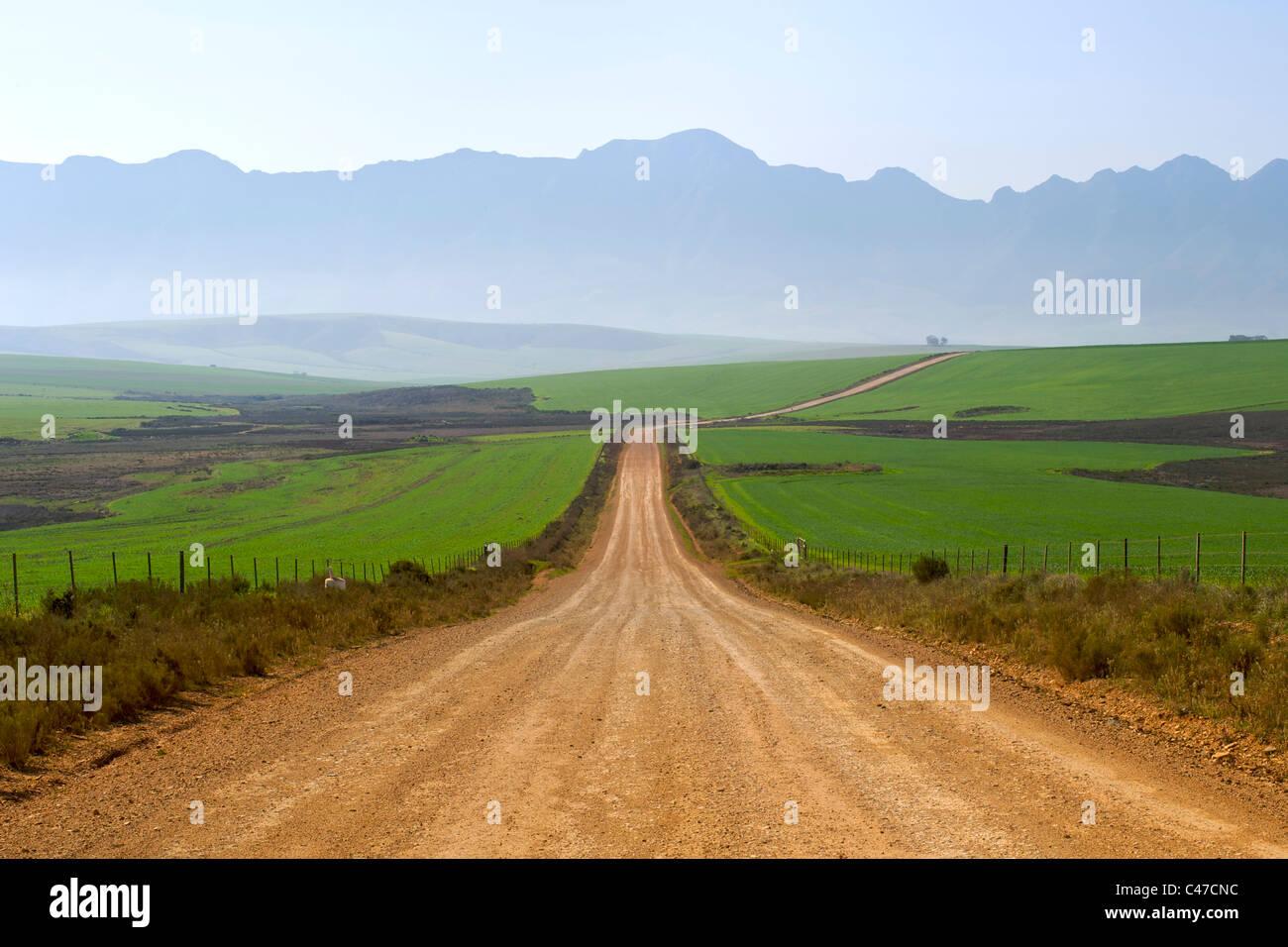 Feldweg führt zu Nethercourt von der N2 Autobahn in der Nähe von Caledon in südafrikanischen Provinz Stockbild