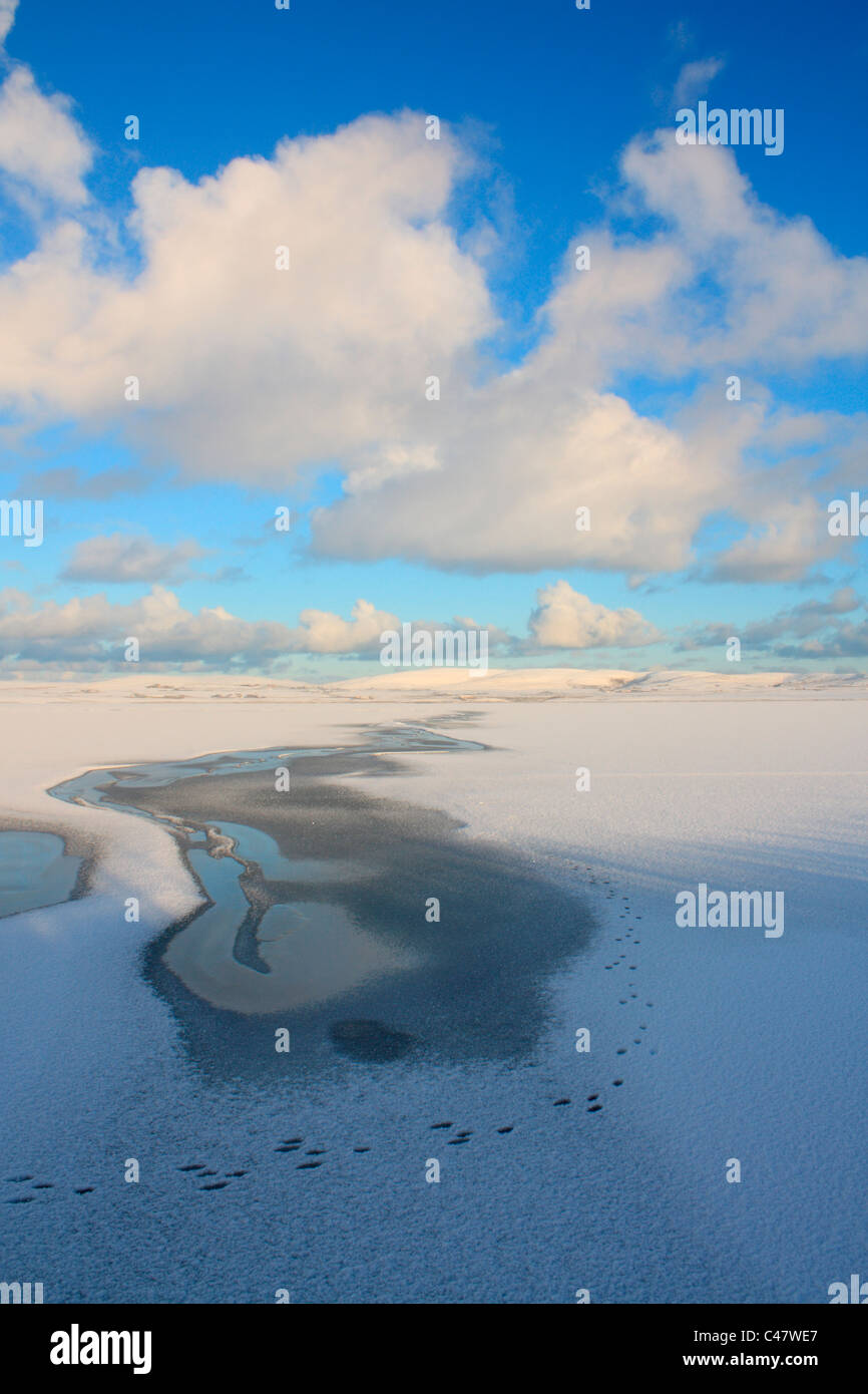 Orkney, Harray Loch im winter Stockbild