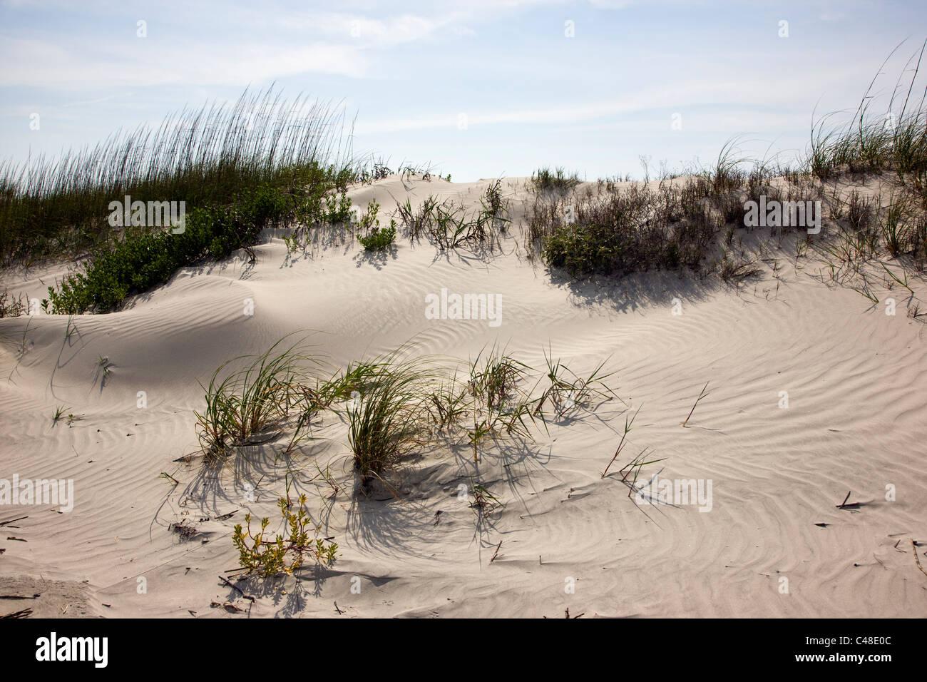 Schönen Sandstrand am Seabrook Island, in der Nähe von Charleston, South Carolina, USA Stockbild