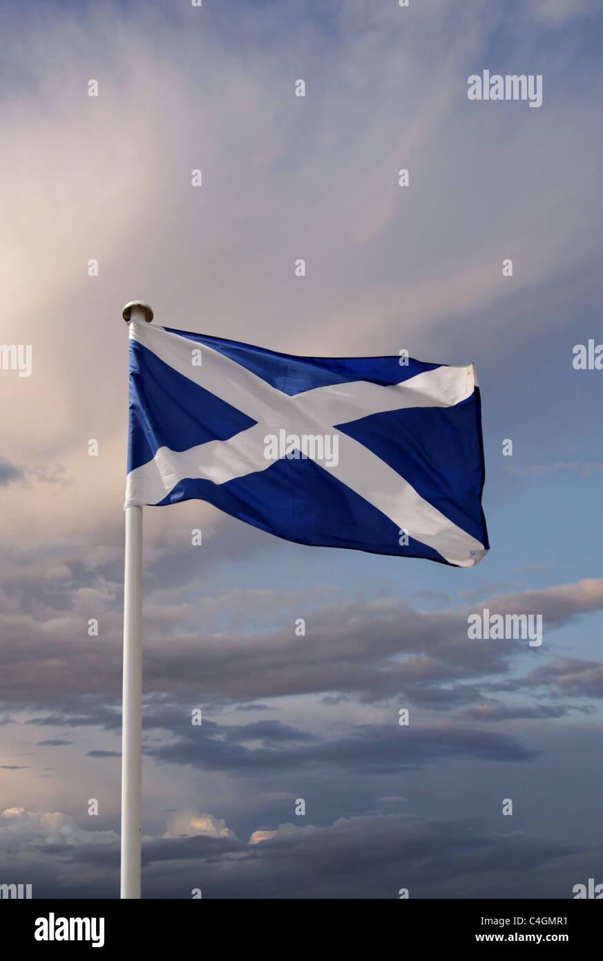 Die schottische Flagge Stockbild