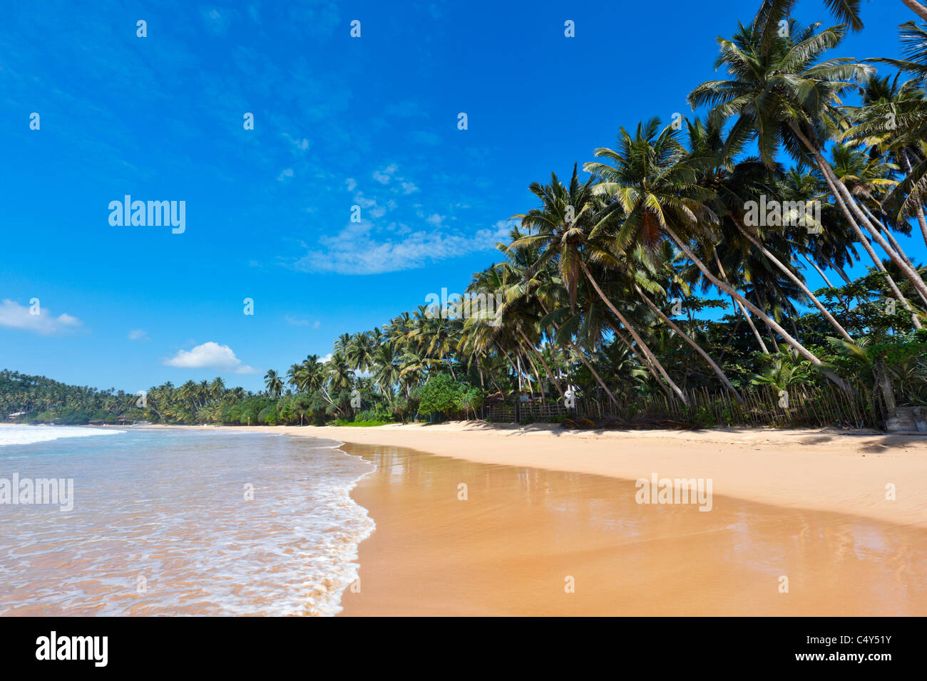 Tropisches Paradies Traumstrand. Sri Lanka Stockbild