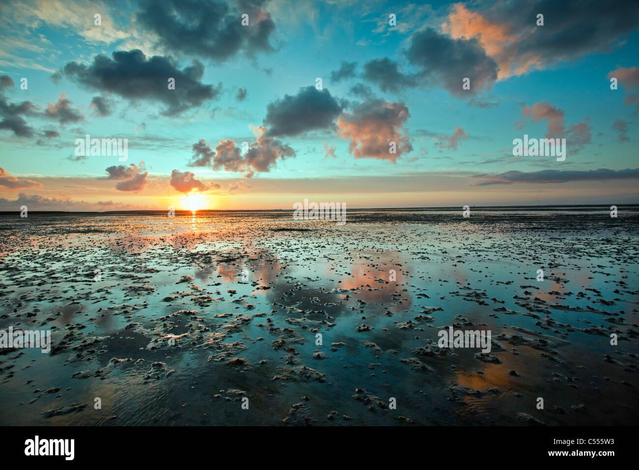 Die Niederlande, Buren, Ameland Insel, gehört zum Wadden Sea Islands. UNESCO-Weltkulturerbe. Watten. Sunrise. Stockbild