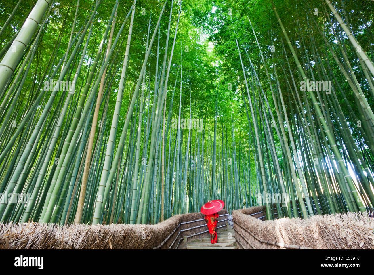 Frau zu Fuß in einem Bambuswald Adashino-Nenbutsu-Ji-Tempel, Arashiyama, Kyoto Prefecture, Kinki Region Honshu, Stockfoto
