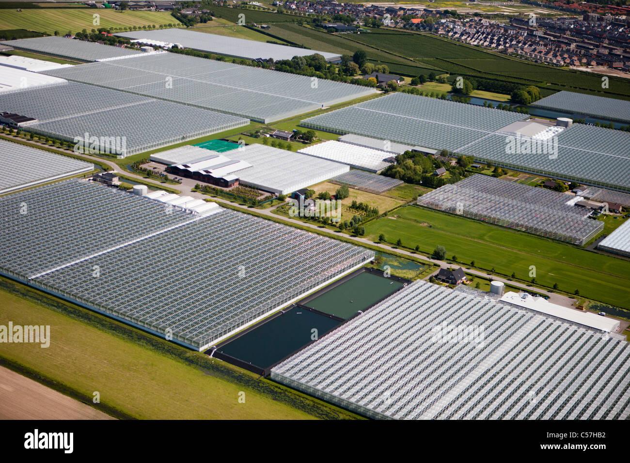 Die Niederlande, Utrecht, Gewächshäuser. Luft. Stockbild