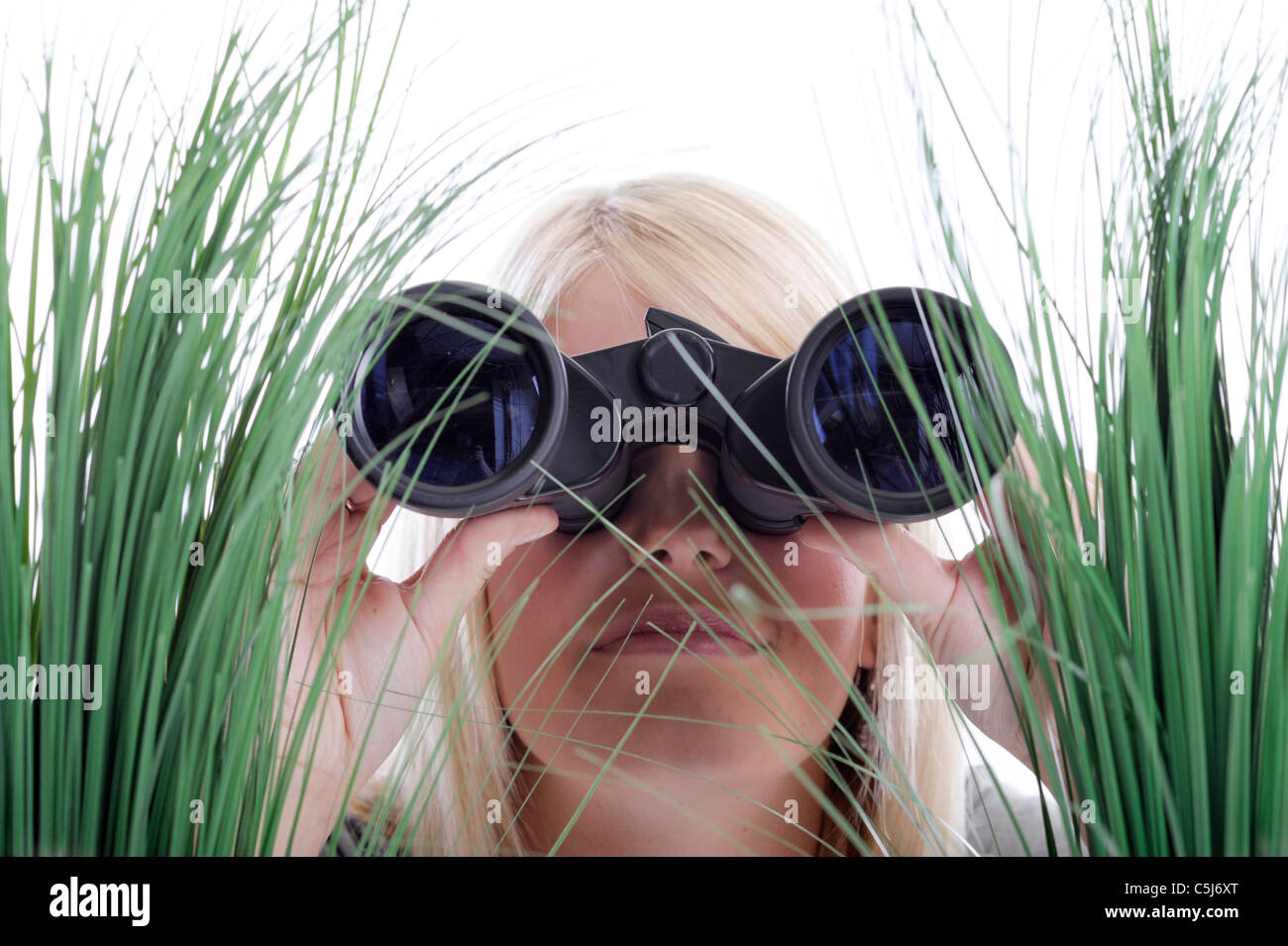 Junge, blonde Frau mit dem Fernglas im Grass liegen Stockbild
