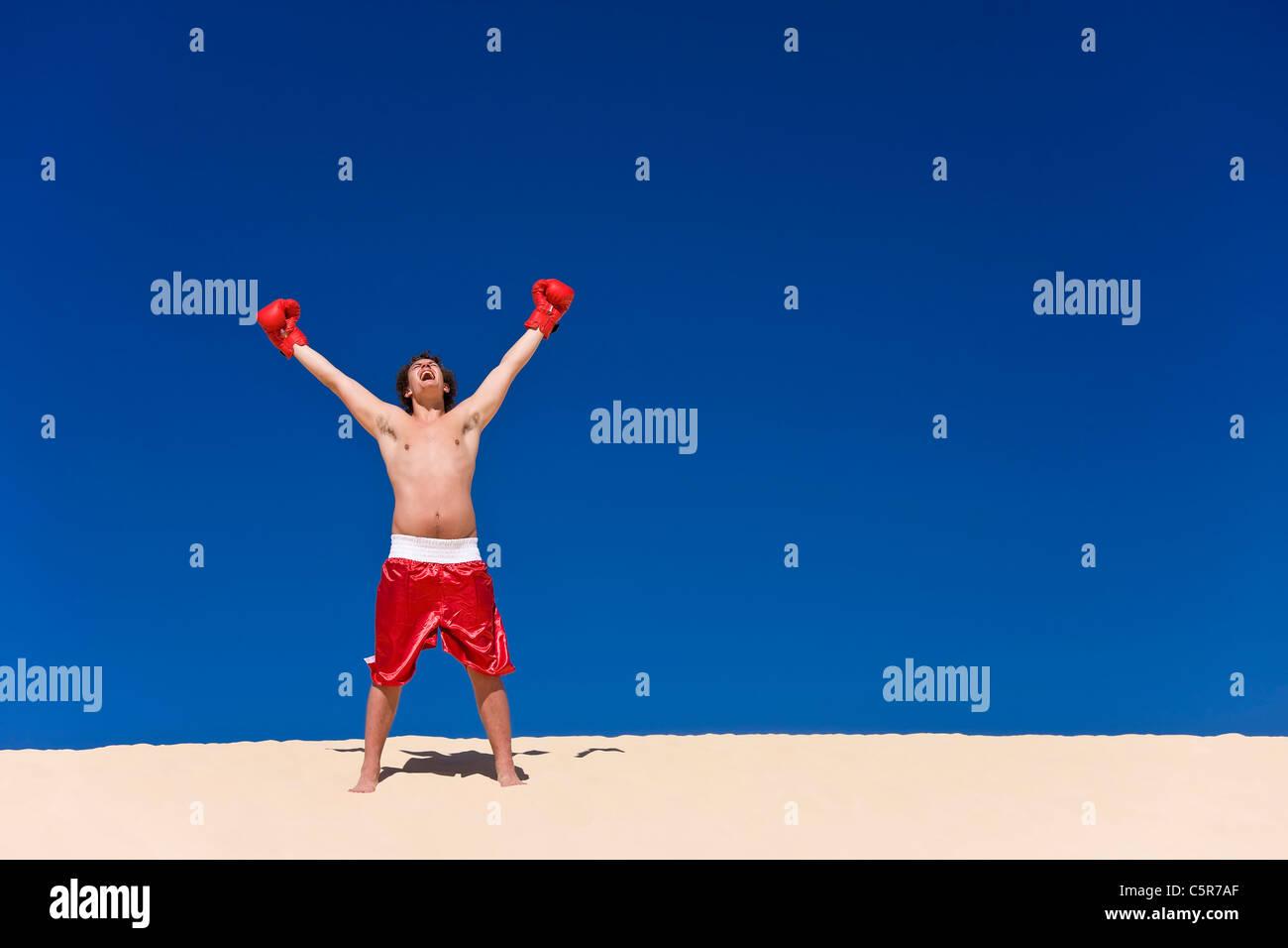 Boxer, feiern Stockbild