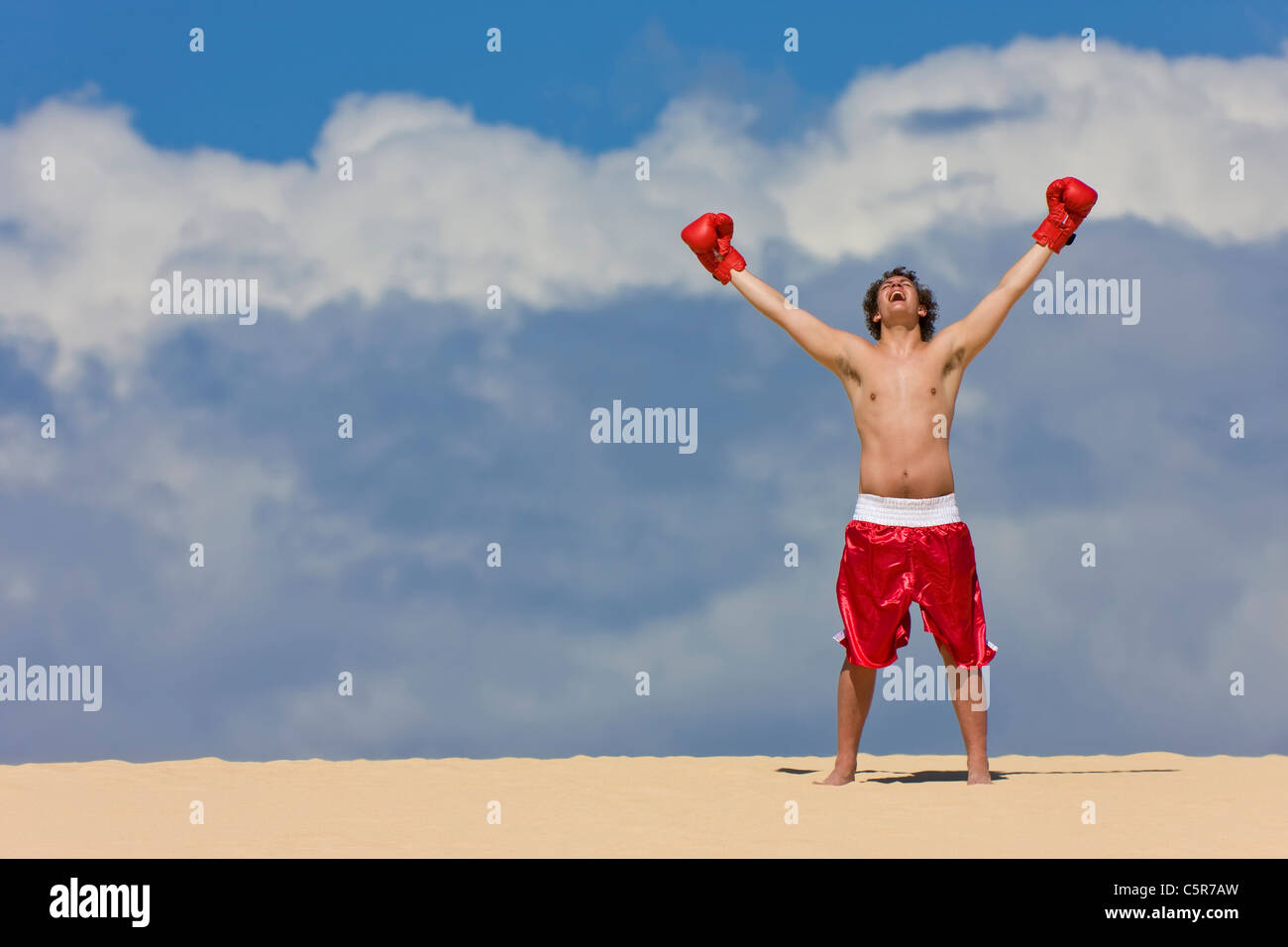 Boxer feiert am Anfang der Welt. Stockbild