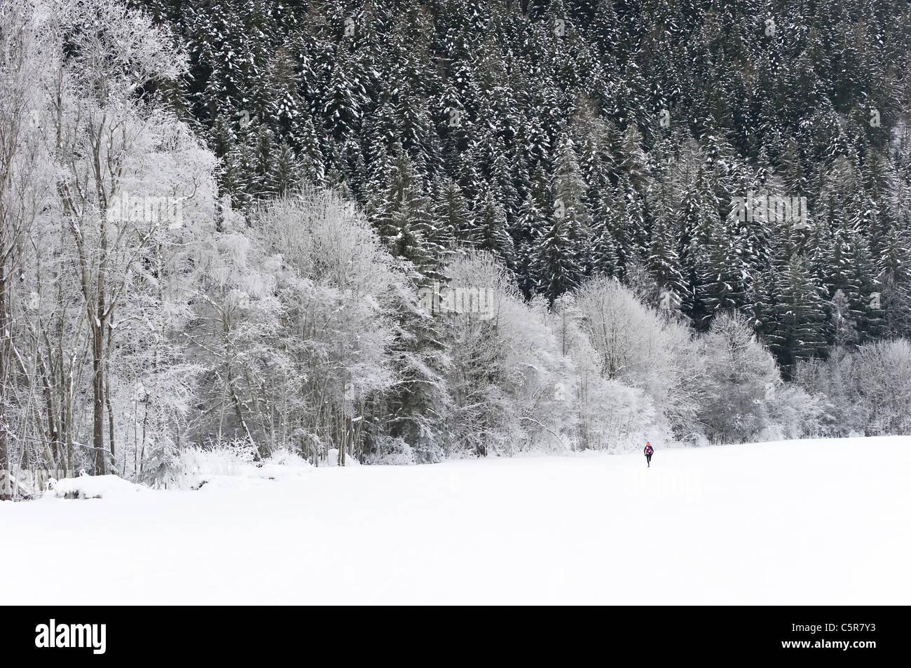 Jogger läuft durch atemberaubende verschneite Winterlandschaft. Stockbild