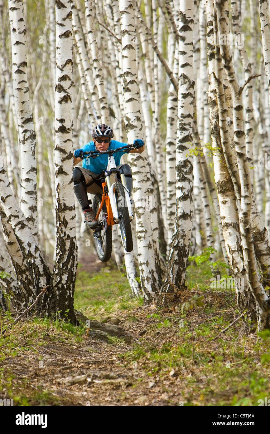 Italien, Comer See, Mountainbiker, Reiten im Wald Stockbild