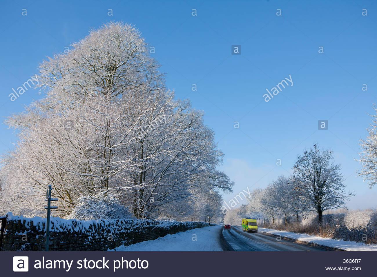 Schneebedeckte Bäume säumen die Straße mit Autos unterwegs Stockbild