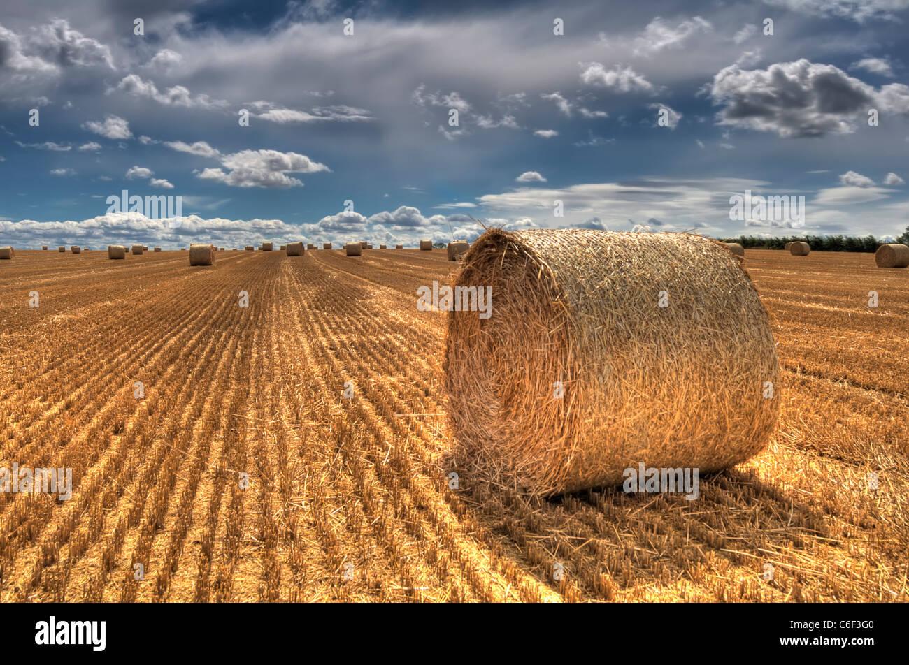 Heuballen in einem Feld nach der Ernte in Leicestershire, England, UK Stockbild
