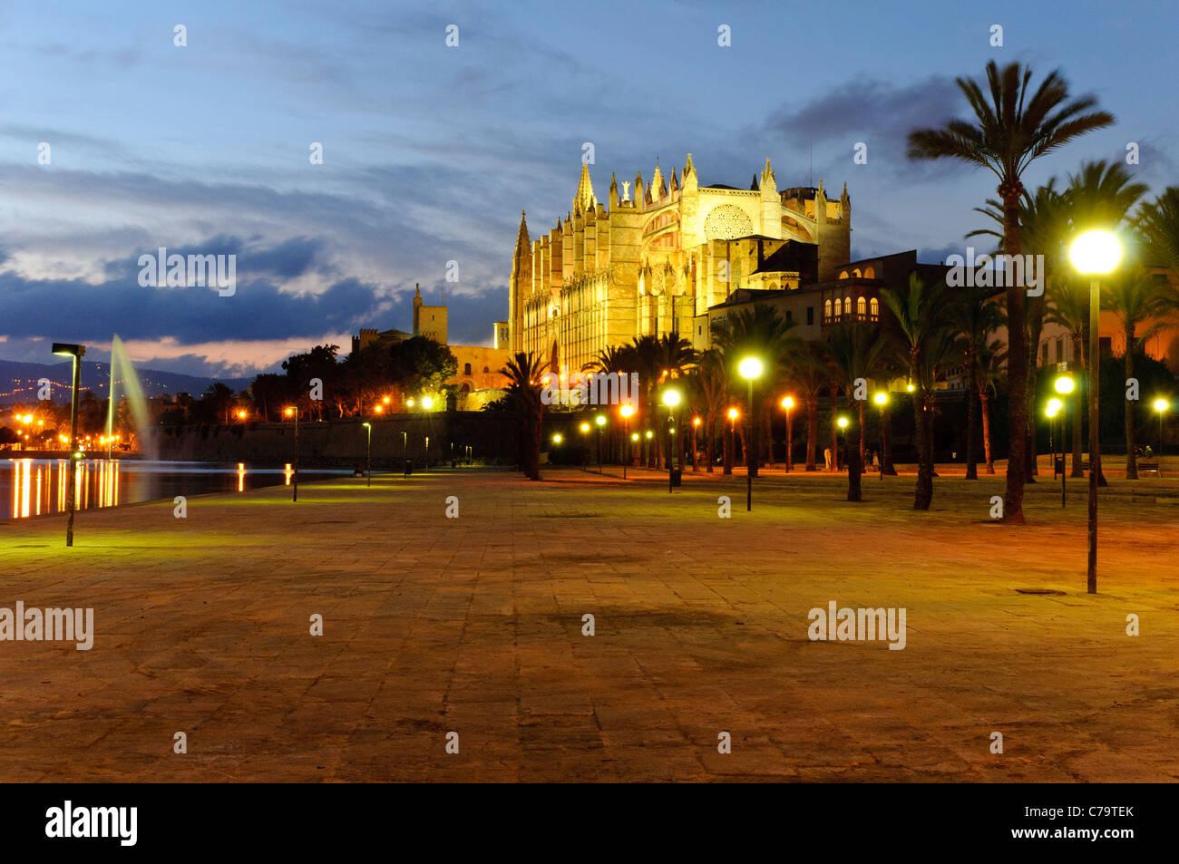 La Seu, beleuchtete Kathedrale und Wahrzeichen von Palma im Abend Licht, historische Zentrum Stadt, Palma de Mallorca, Stockbild