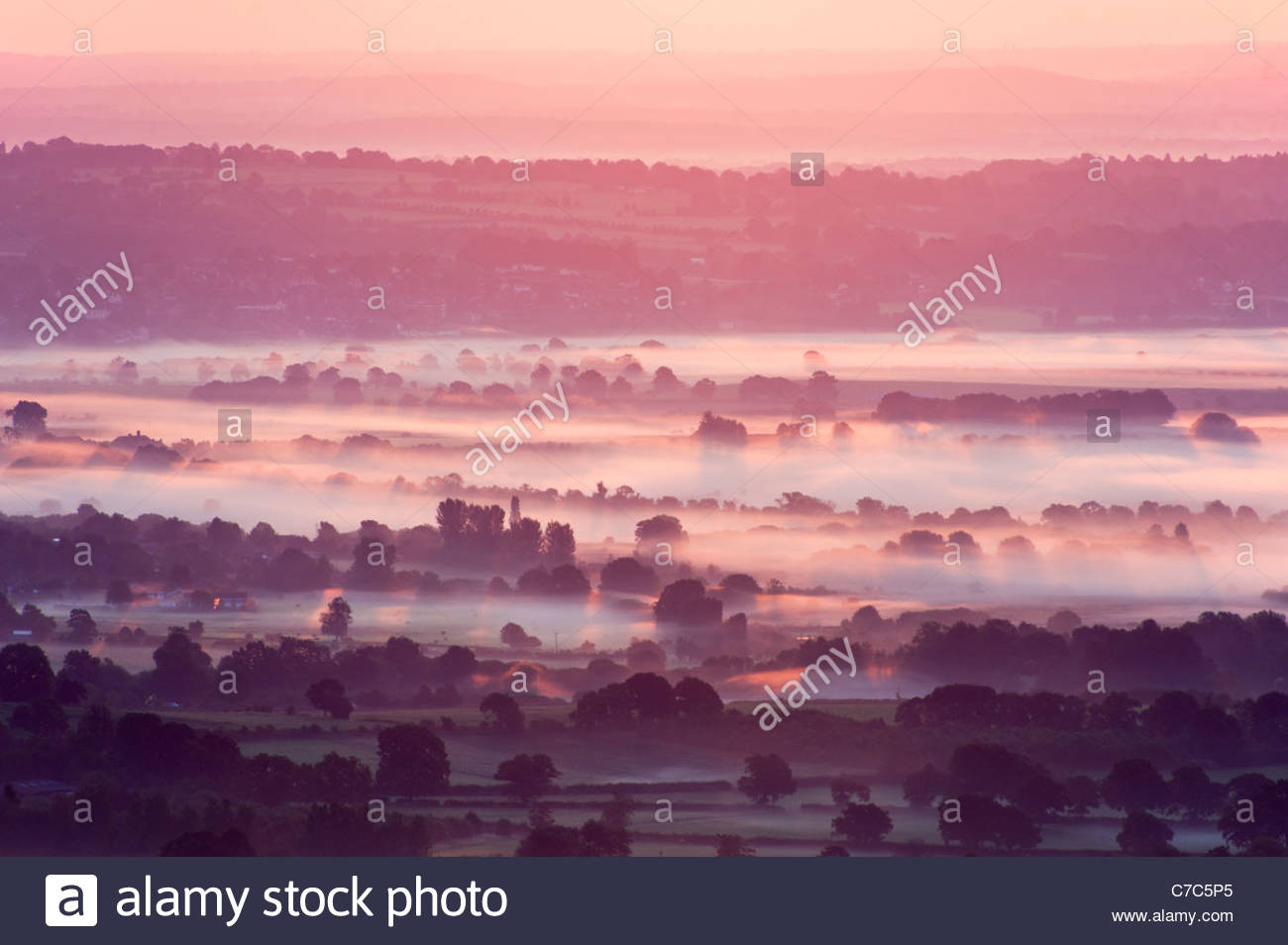 Morgennebel in der South Downs National Park Stockbild