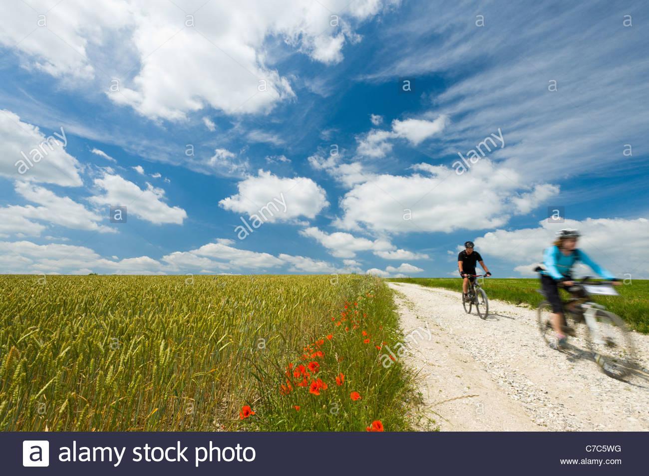 Radfahrer auf der South Downs Way, Sussex, England. Stockbild