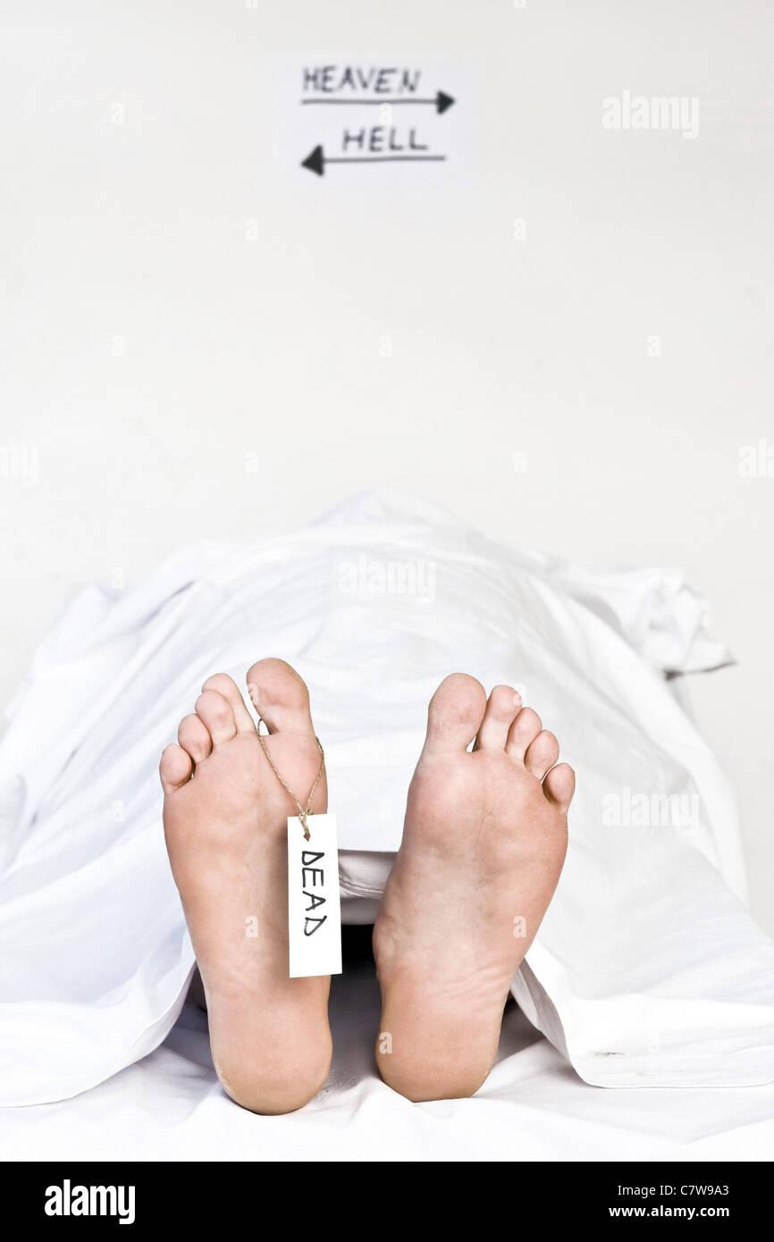 Menschliche Kadaver, Detail des Fußes mit Toe-tag Stockbild