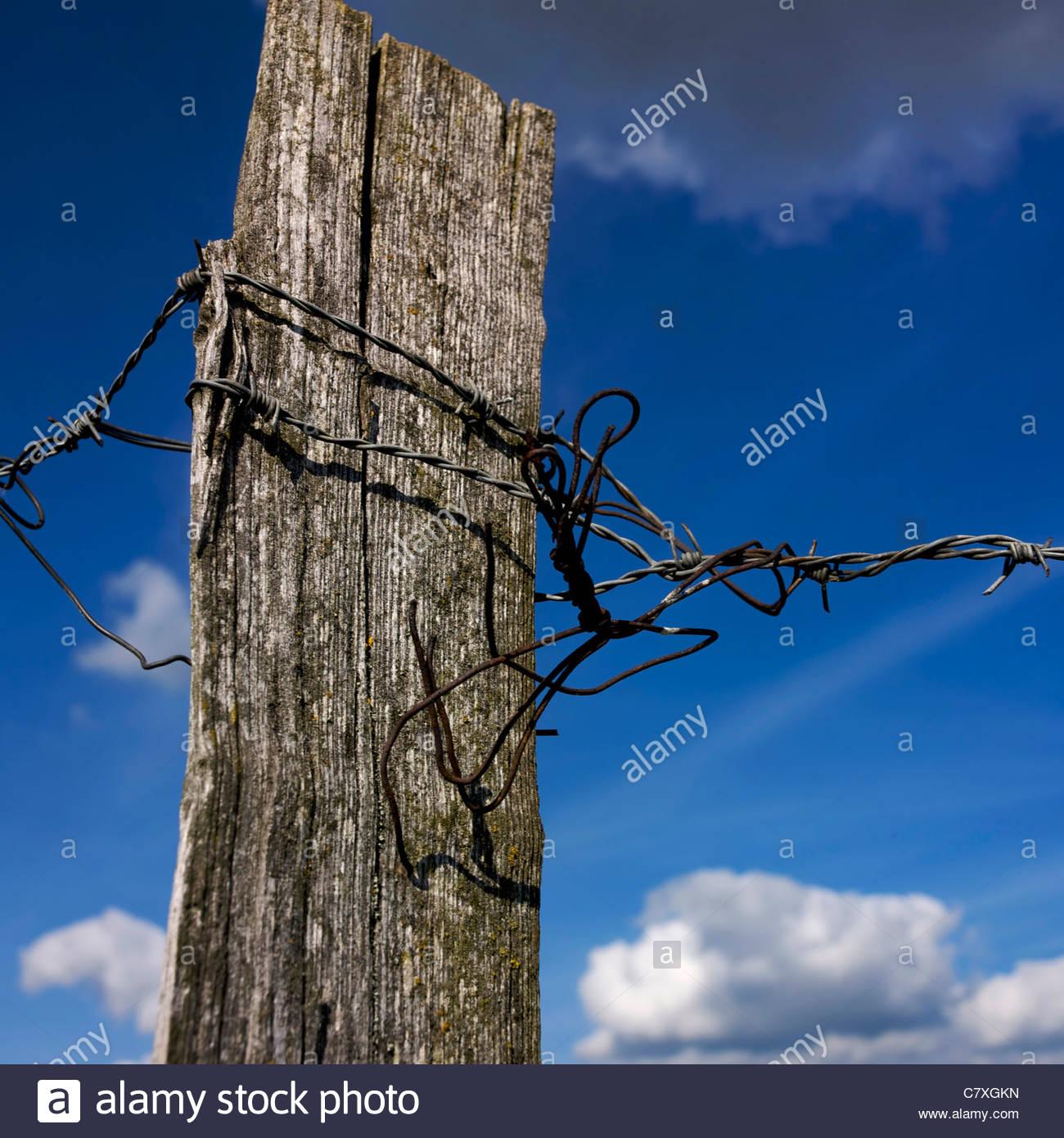 Holz-Zaun mit Stacheldraht verdreht Stockbild