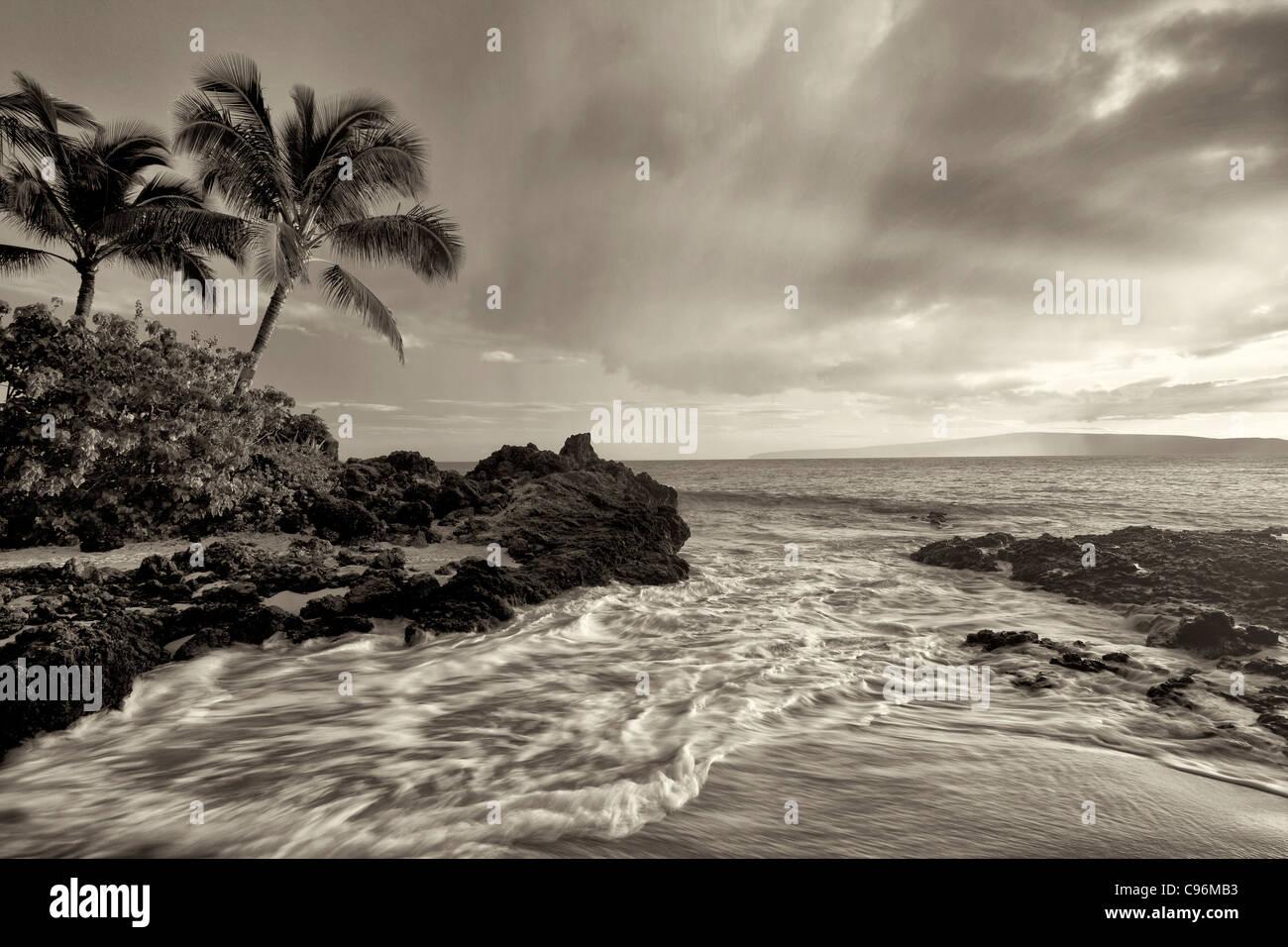 Sonnenuntergang und Welle mit Palmen. Maui, Hawaii. Stockbild