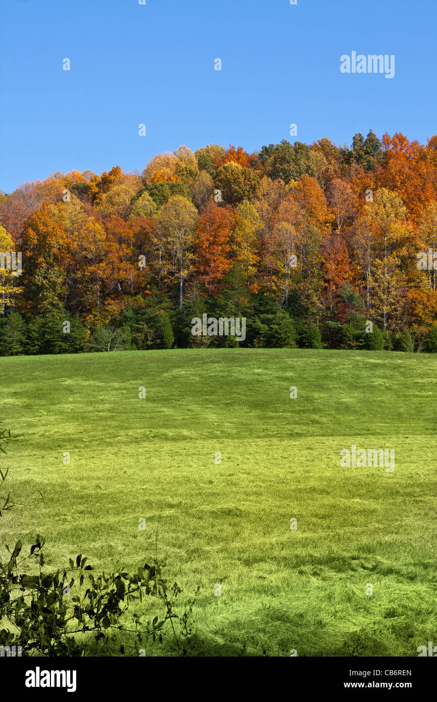 Herbst-Landschaft in McMinn County, Tennessee, USA Stockbild