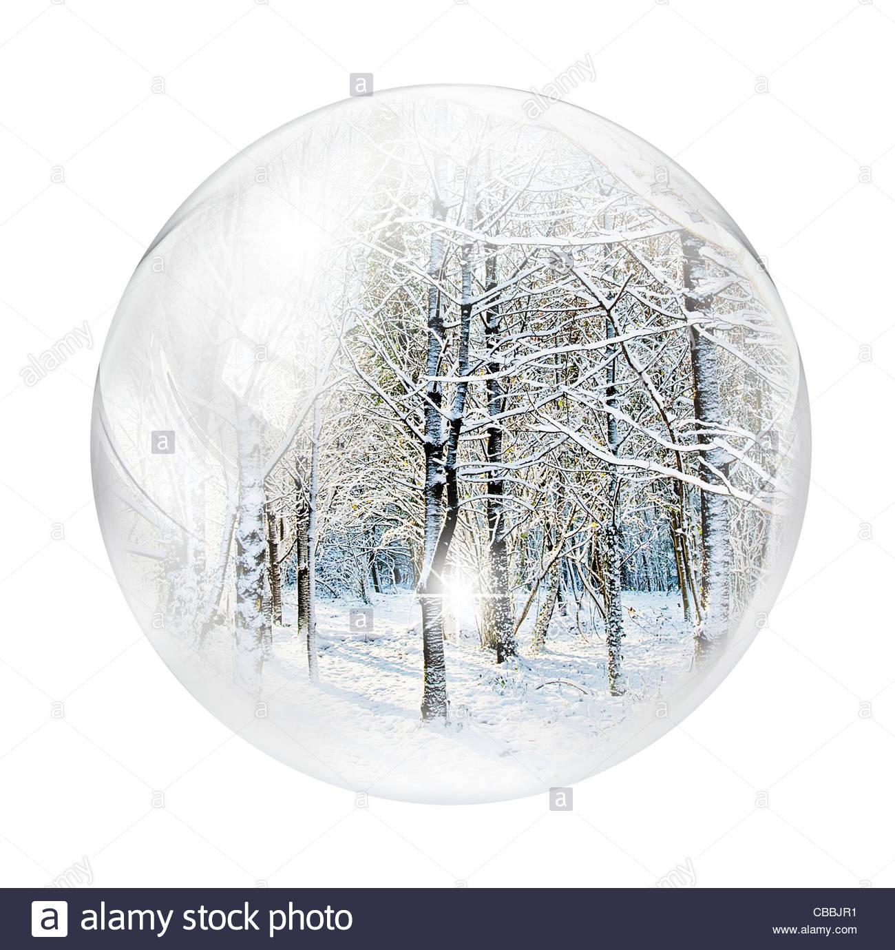 Winterwald in Blase Stockbild