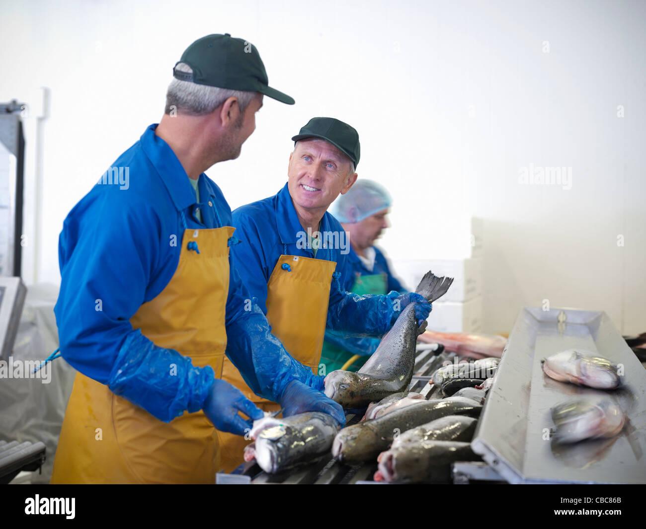 Fischhändler mit Fang des Tages Stockbild