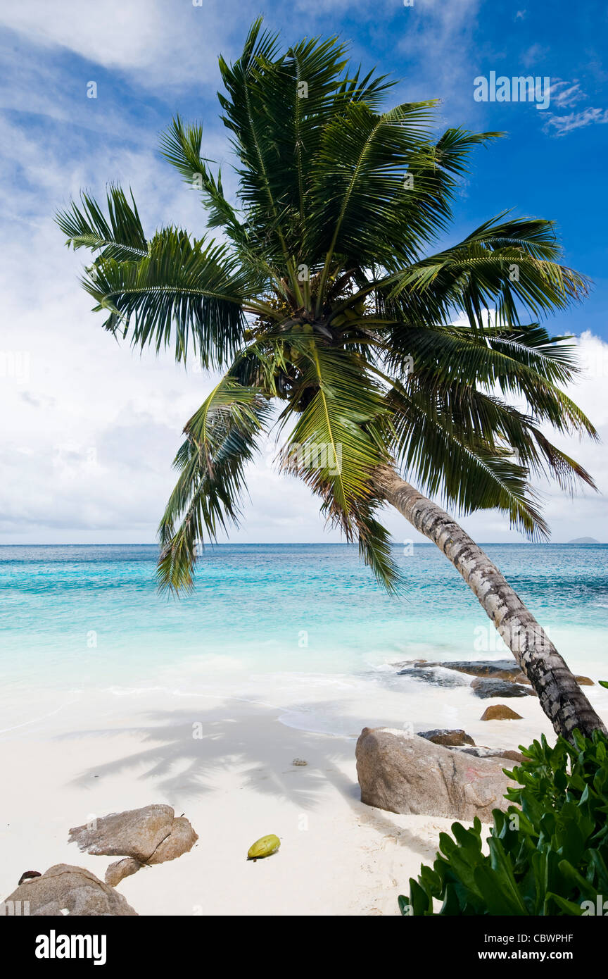 Four Seasons resort Strand, Mahe, Seychellen Stockbild