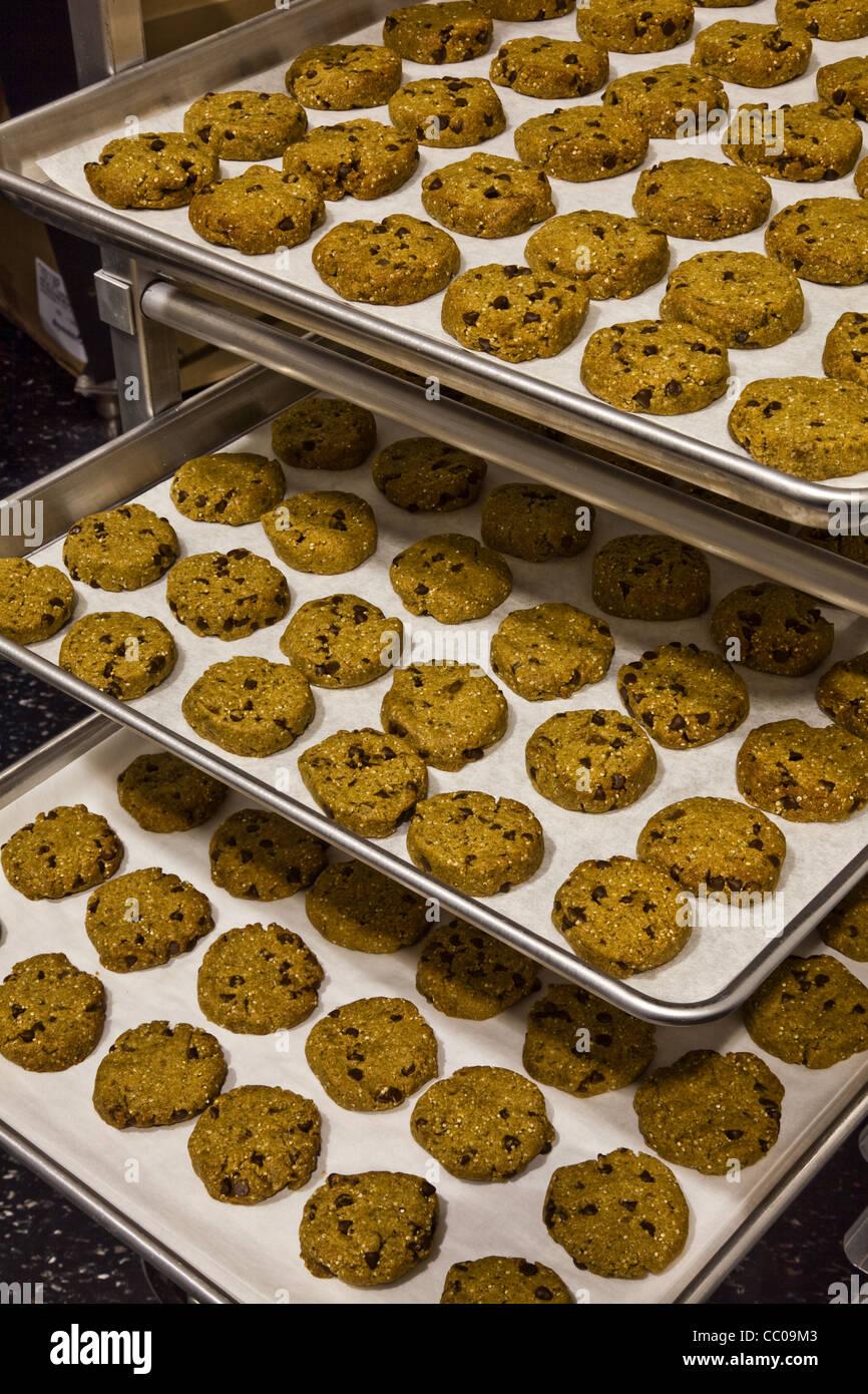 Glutenfreie Cookies aufgereiht auf Backbleche Stockbild