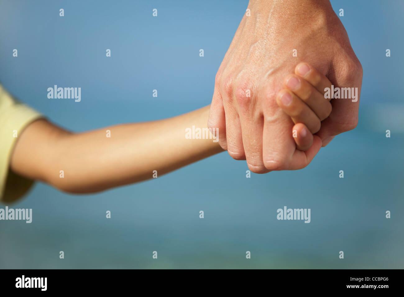 Erwachsenen Kindes Hand hält, beschnitten Stockbild