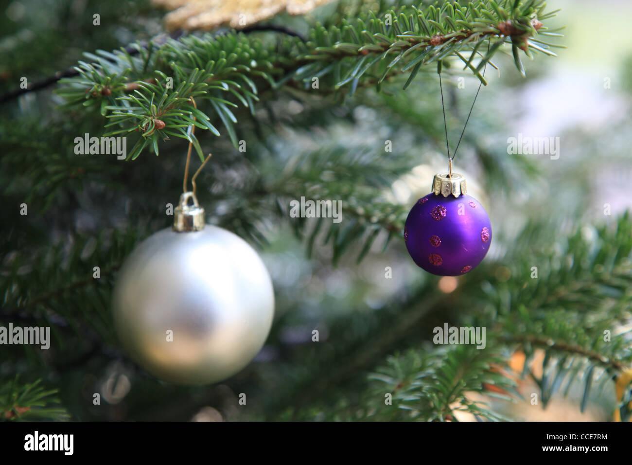 weihnachtsstern stockfotos weihnachtsstern bilder alamy. Black Bedroom Furniture Sets. Home Design Ideas