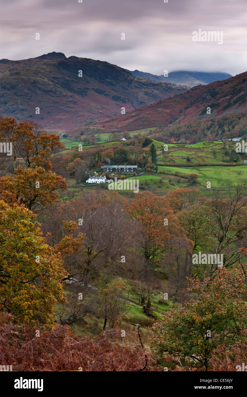 Ferienhäuser in kleinen Langdale Valley, Lake District, Cumbria, England. Herbst (November) 2011. Stockbild