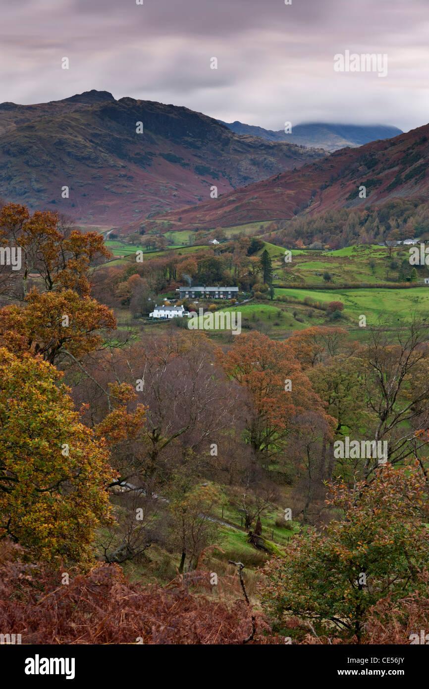 Ferienhäuser in kleinen Langdale Valley, Lake District, Cumbria, England. Herbst (November) 2011. Stockbild