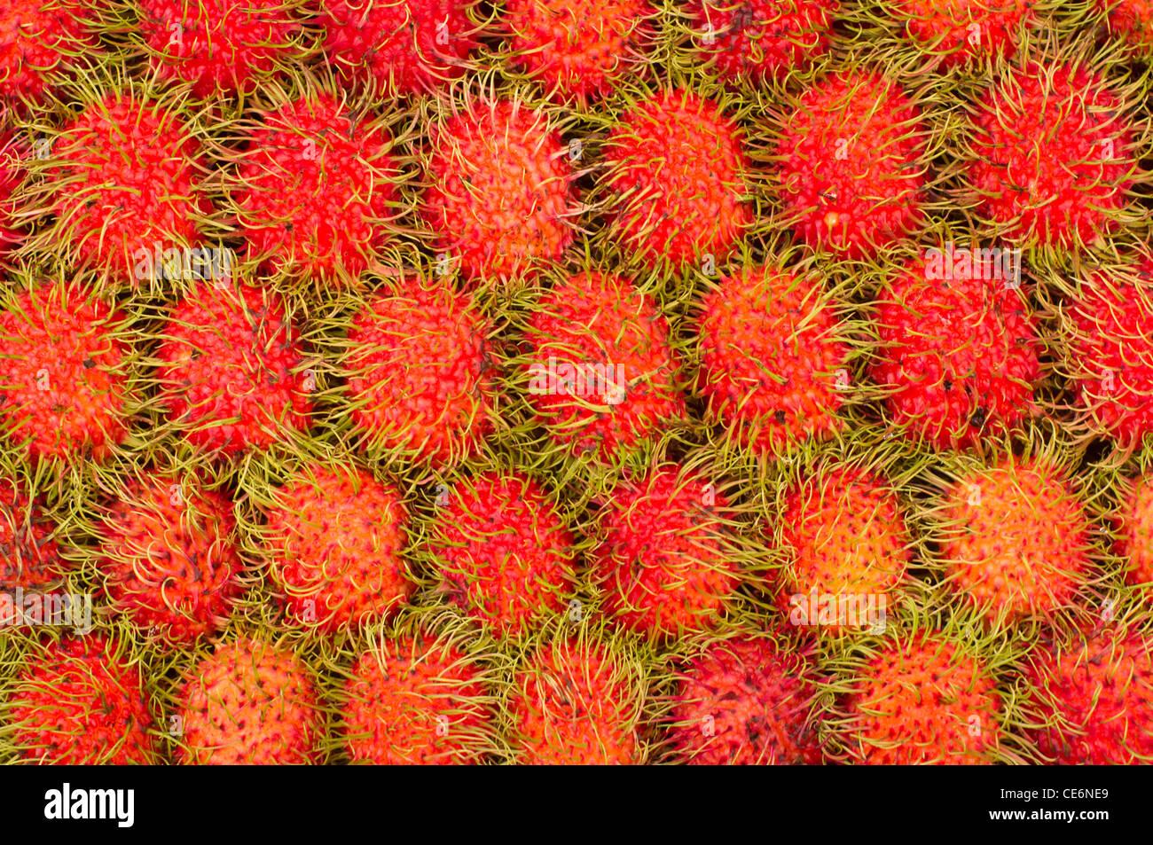 Rambutan Früchte, eine der gemeinsamen Früchte in Asien Länder gefunden. Stäbchen wurden in Stockbild