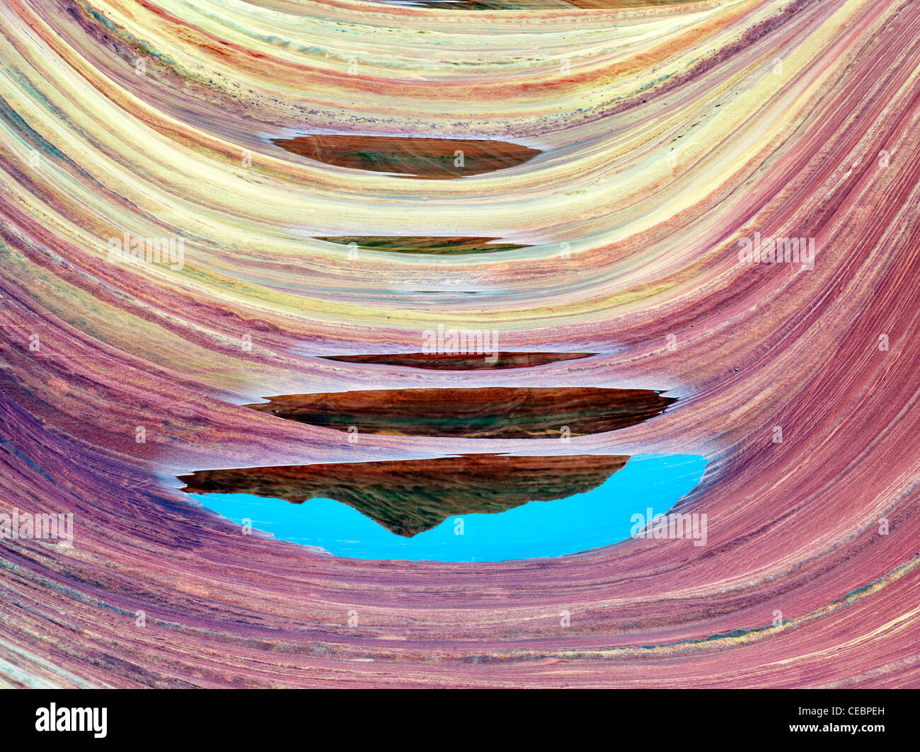 Sandtone Bildung und Wasserbecken in North Coyote Buttes, The Wave. Paria Canyon-Vermillion Cliffs Wilderness. Utah Stockbild