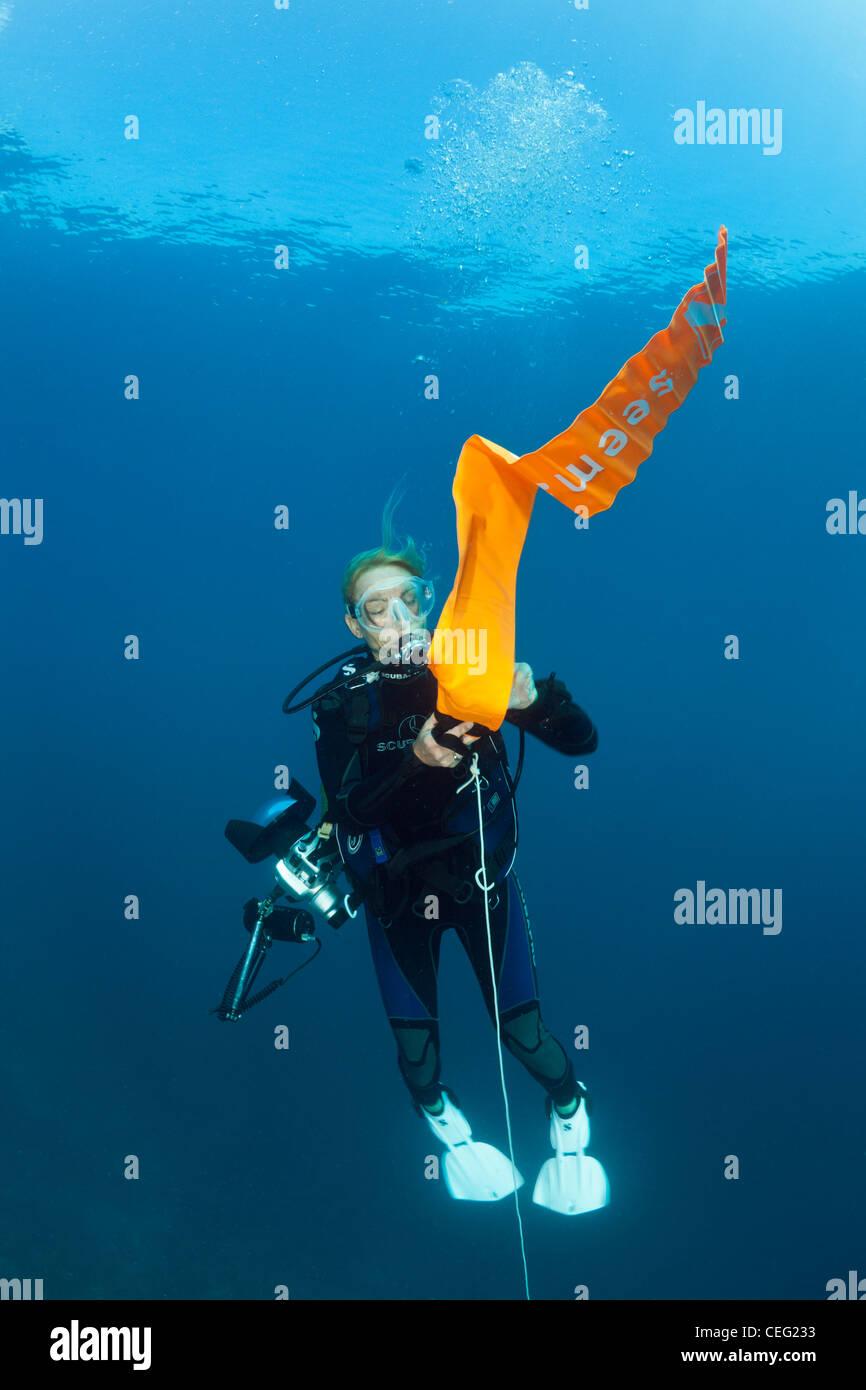 Taucher bläst ihr Surface Marker Buoy, Baa Atoll, Indischer Ozean, Malediven Stockbild