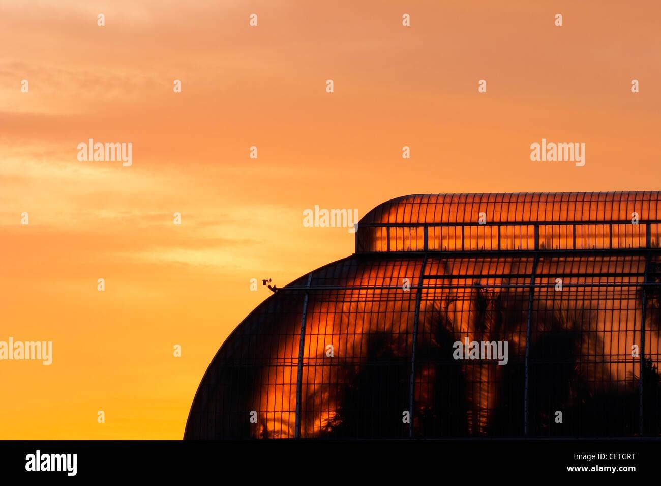 Das Palmenhaus bei Sonnenuntergang. In1844-48, Decimus Burtons Designs von Richard Turner erbaut, ist das Palmenhaus Stockbild