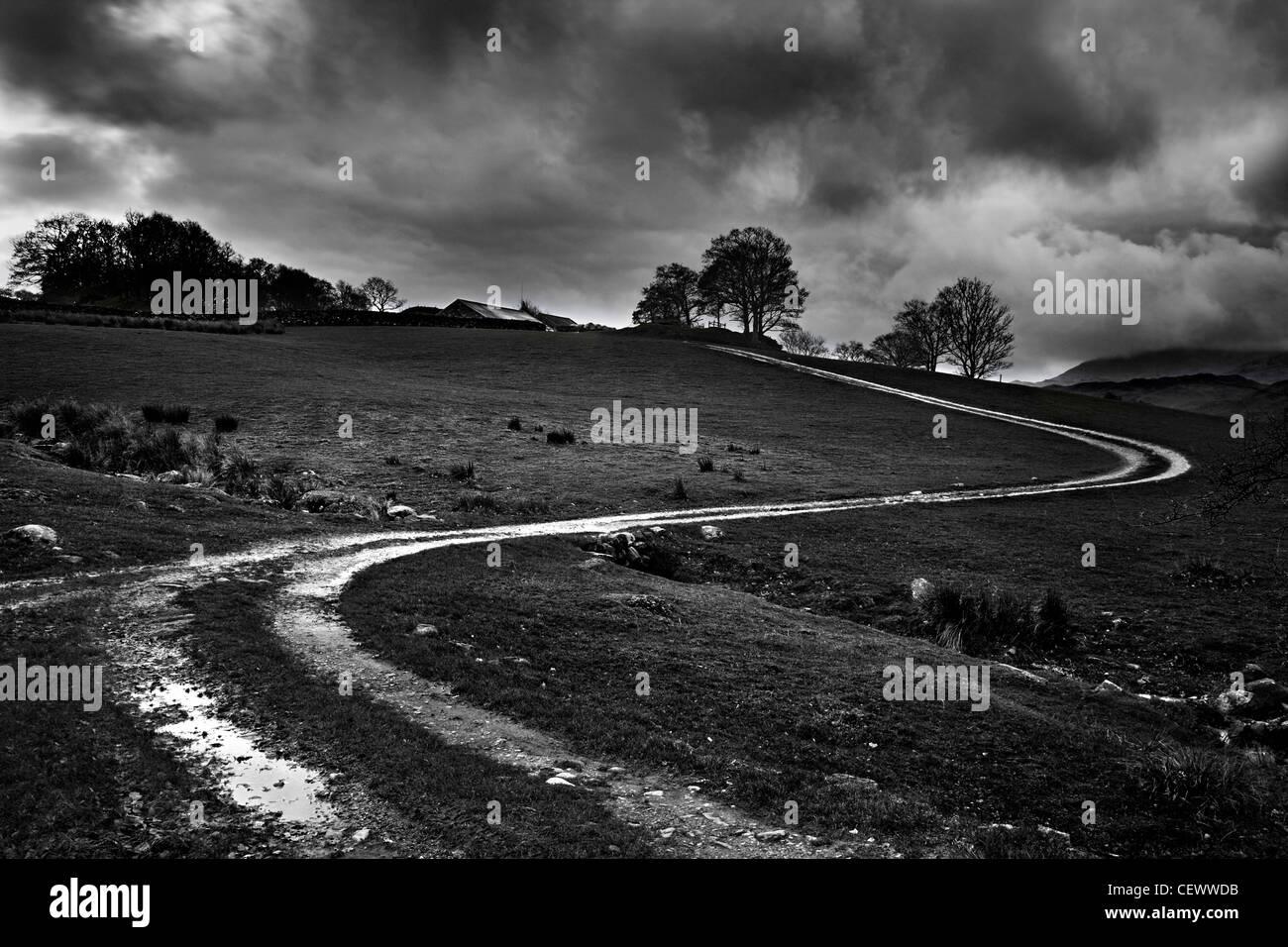 Sich schlängelnden Feldweg in der Nähe von Coniston im englischen Lake District. Donald Campbell brach Stockbild