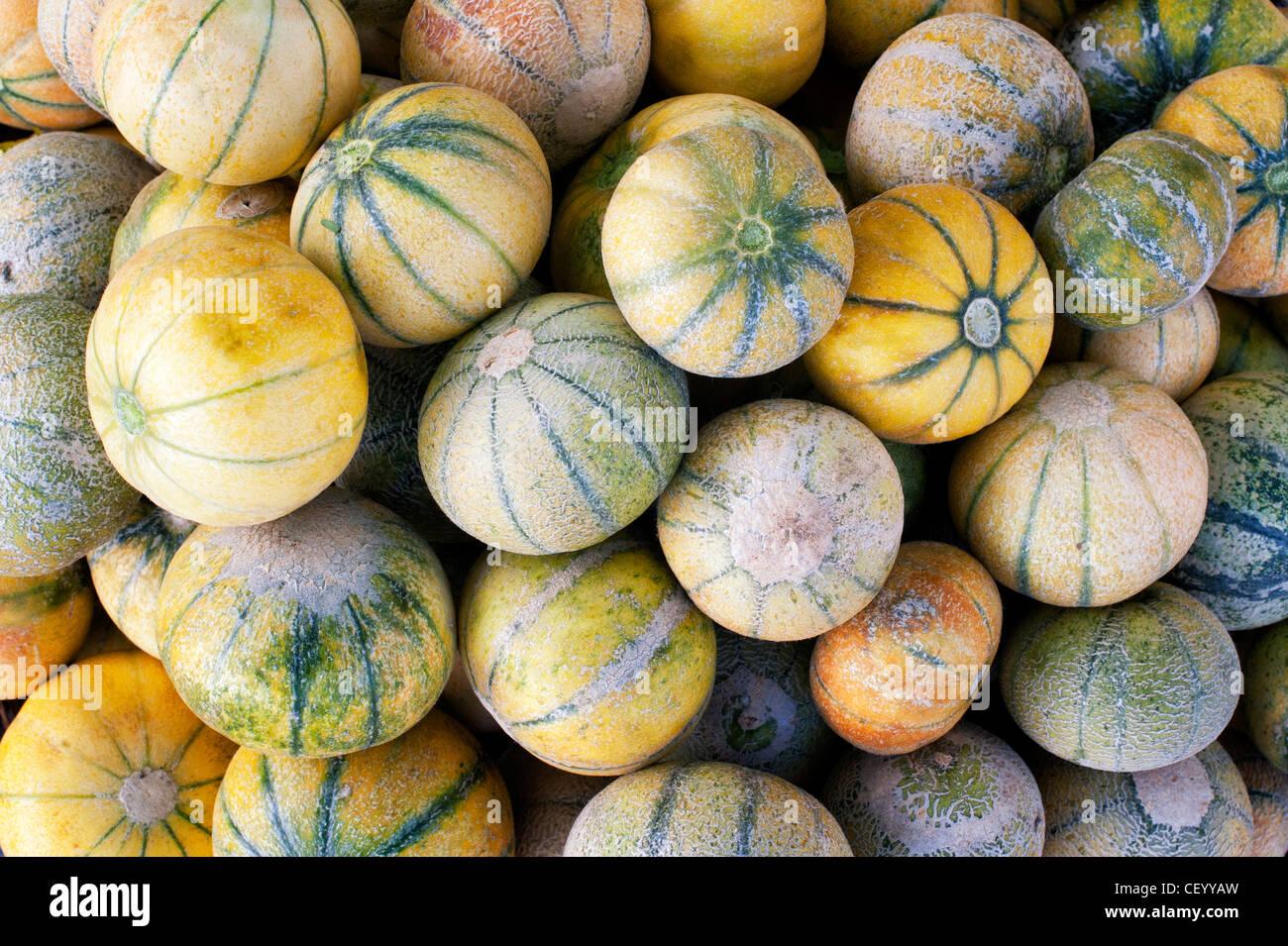 Frische Melonen zum Verkauf auf einem indischen Markt. Andhra Pradesh, Indien Stockbild