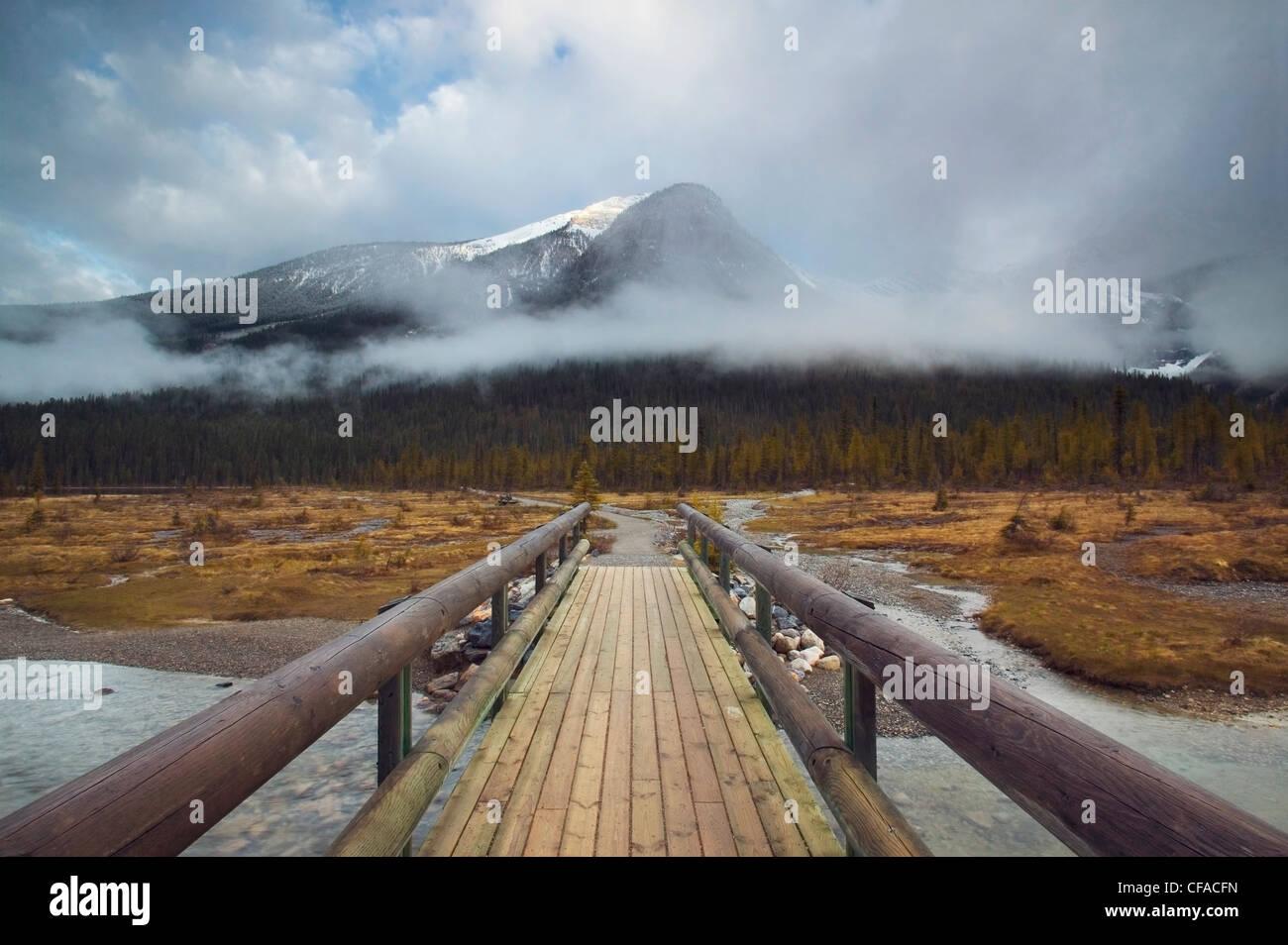 Emerald Gipfel und Brücke entlang der Emerald Lake Circuit. Yoho Nationalpark, Britisch-Kolumbien, Kanada. Stockbild