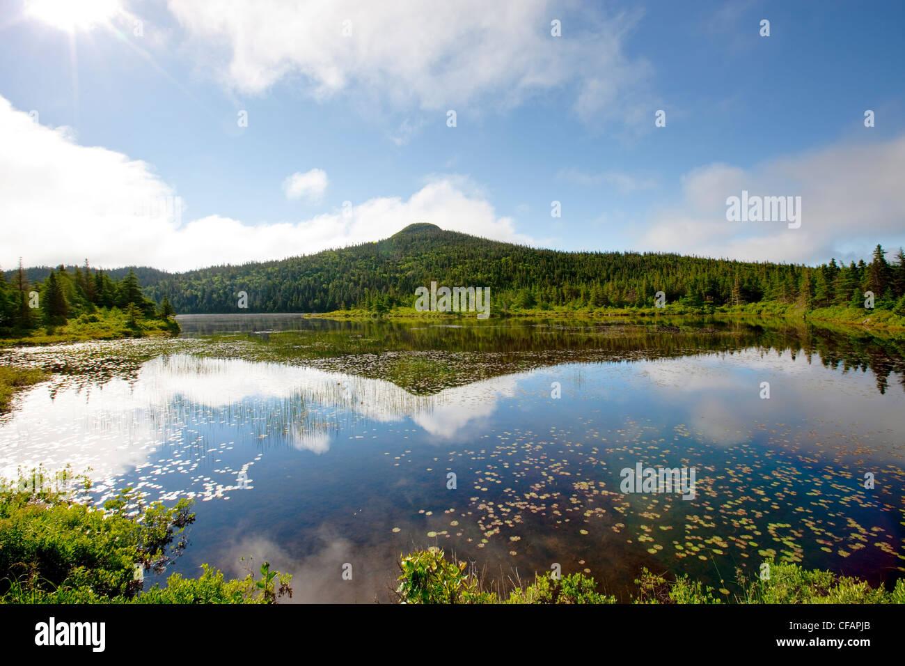 Teich im Frühling in der Nähe von Colbert es Bucht, Neufundland und Labrador, Kanada. Stockbild