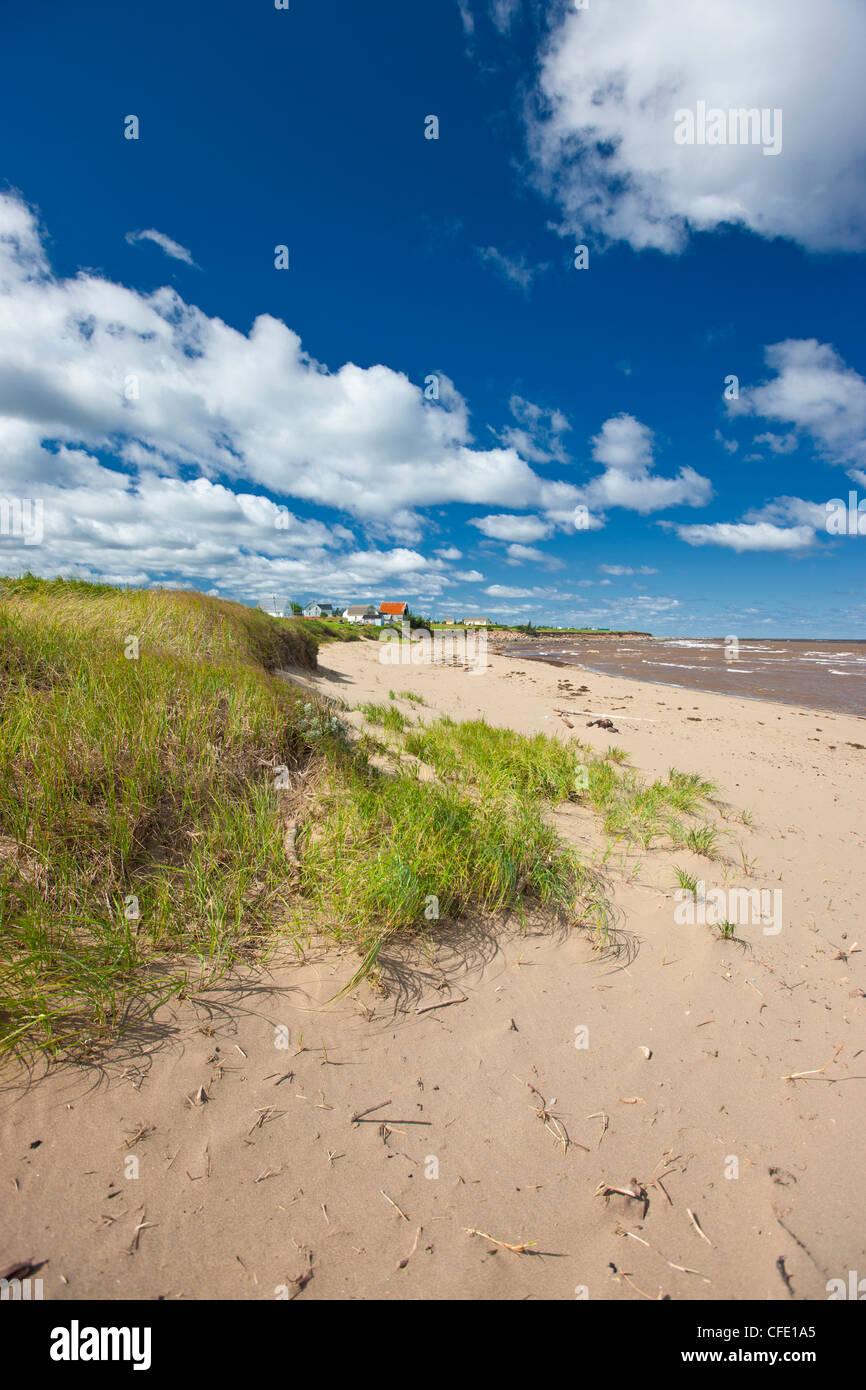 Strand, Wharf Road, Little Shemogue, Acadian Küste, New Brunswick, Kanada Stockbild