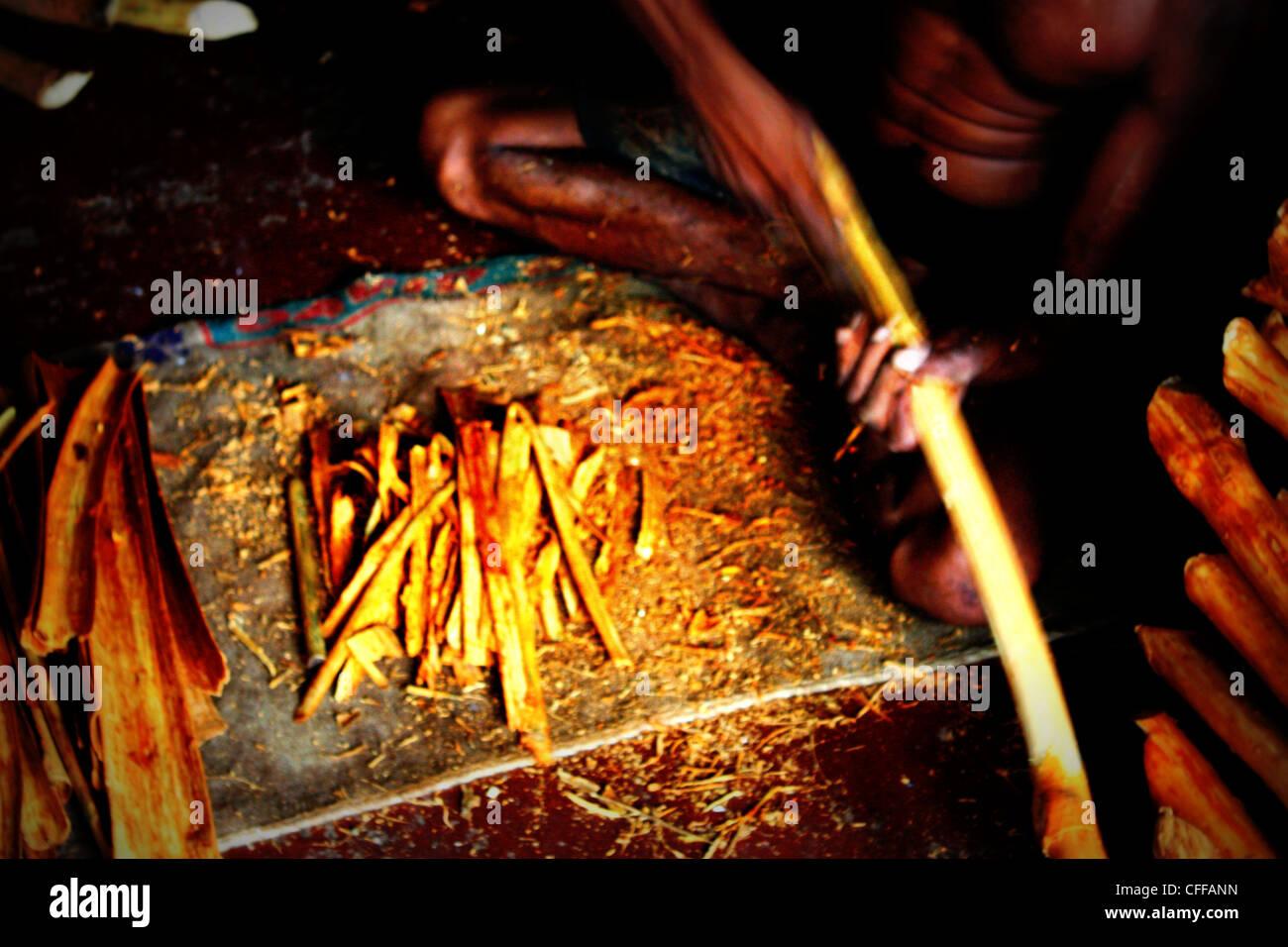Zimt Herstellung SriLanka Stockbild