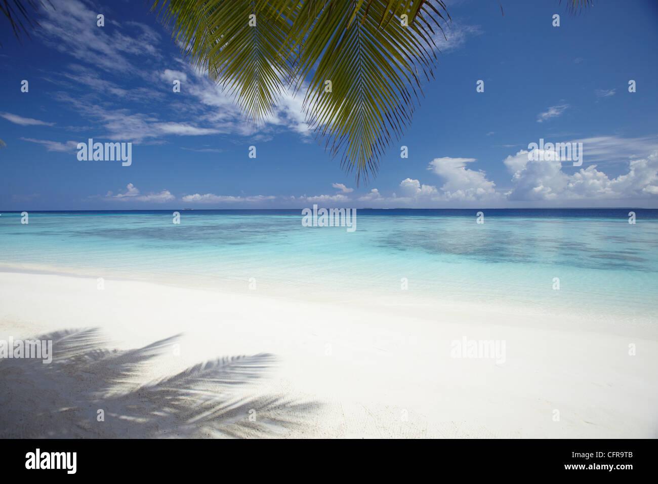 Tropischer Strand Malediven, Malediven, Indischer Ozean, Asien Stockbild